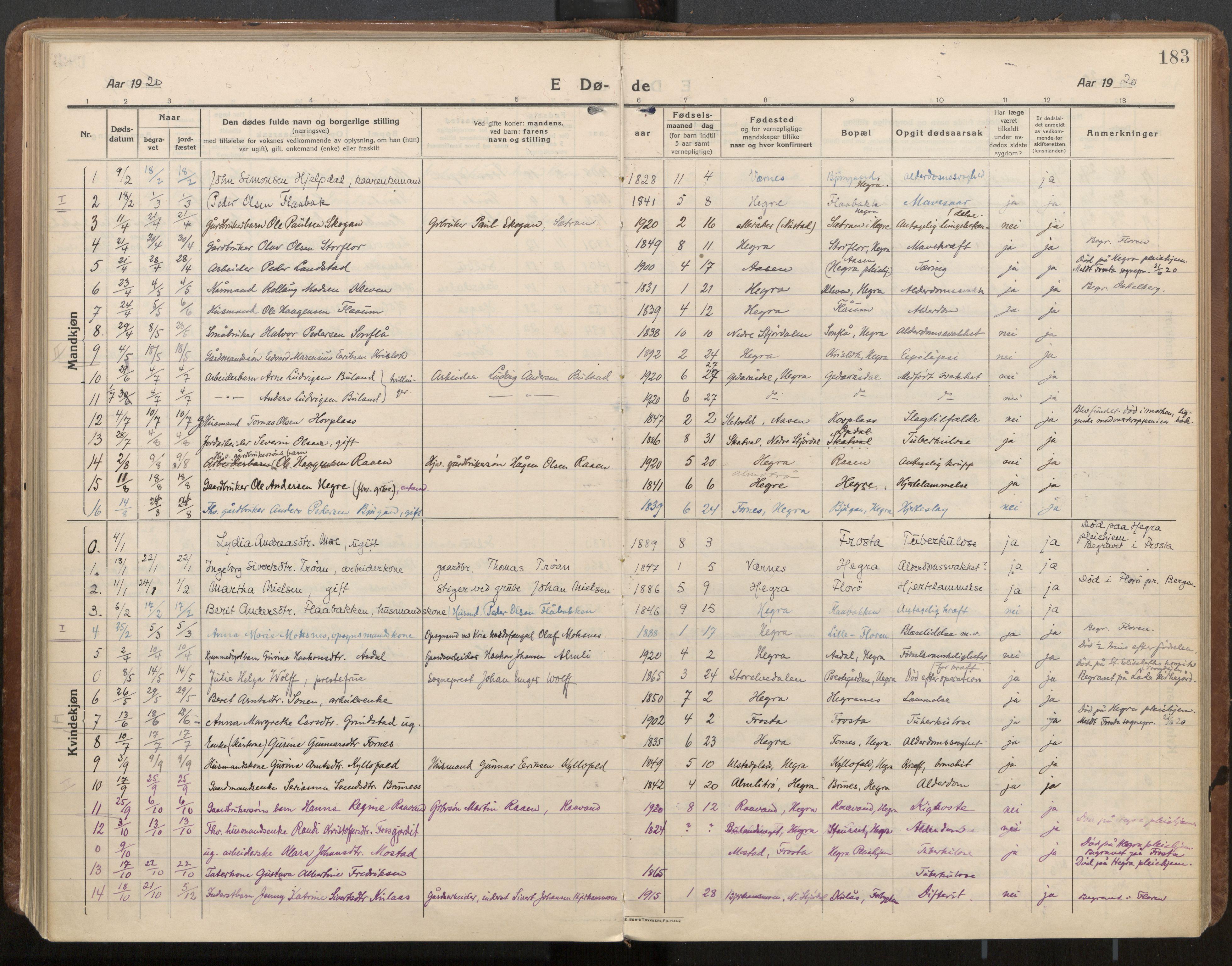 SAT, Ministerialprotokoller, klokkerbøker og fødselsregistre - Nord-Trøndelag, 703/L0037: Parish register (official) no. 703A10, 1915-1932, p. 183
