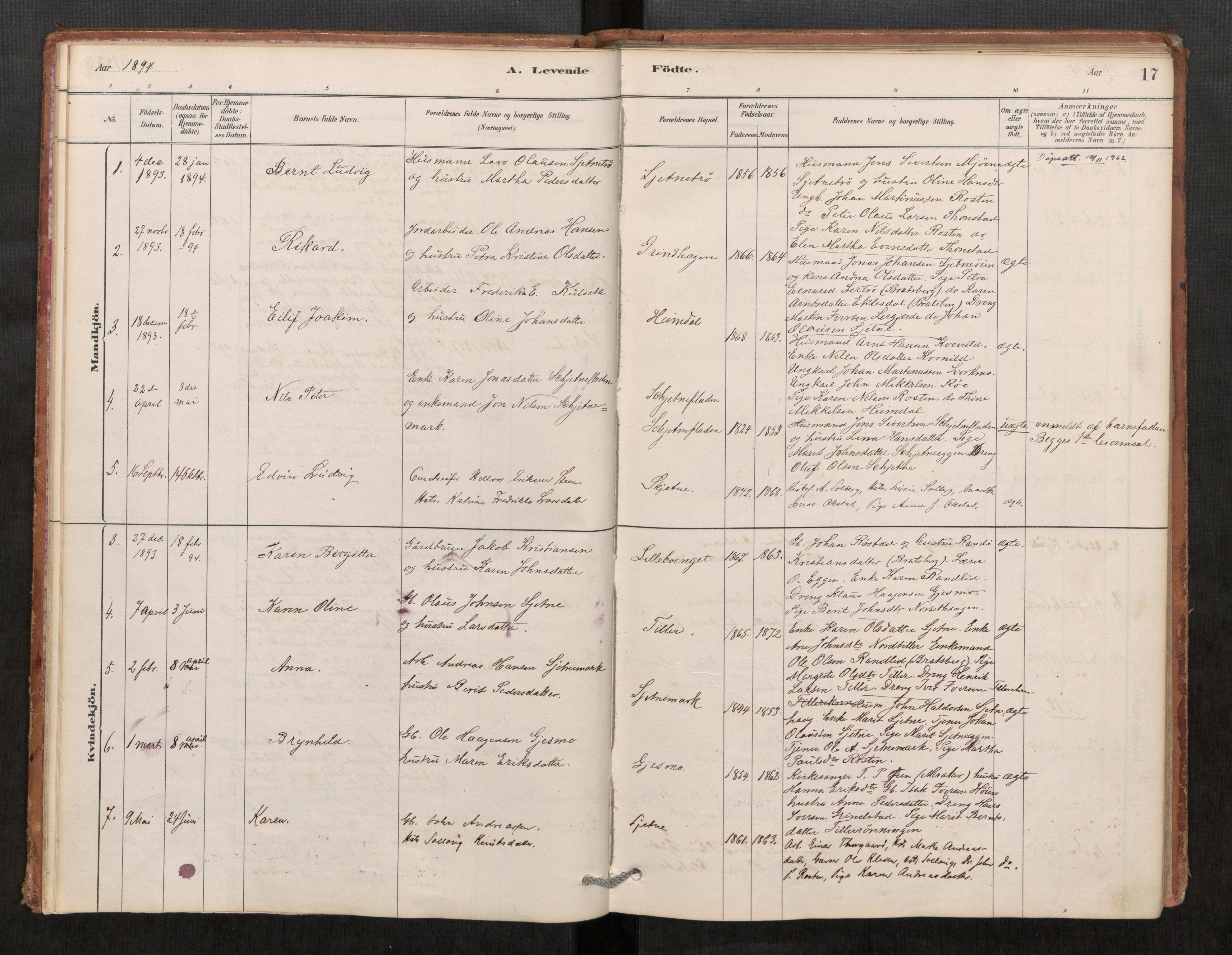 SAT, Klæbu sokneprestkontor, Parish register (official) no. 1, 1880-1900, p. 17