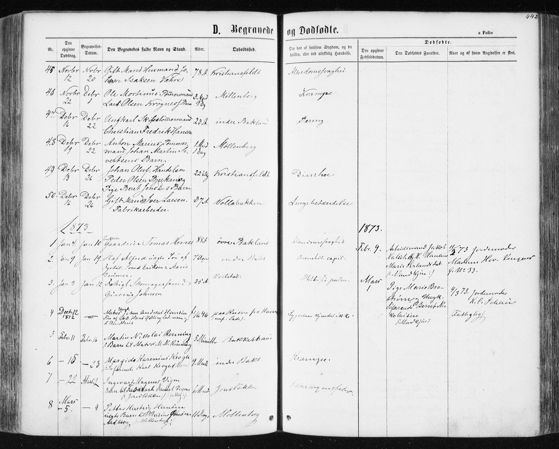 SAT, Ministerialprotokoller, klokkerbøker og fødselsregistre - Sør-Trøndelag, 604/L0186: Parish register (official) no. 604A07, 1866-1877, p. 442