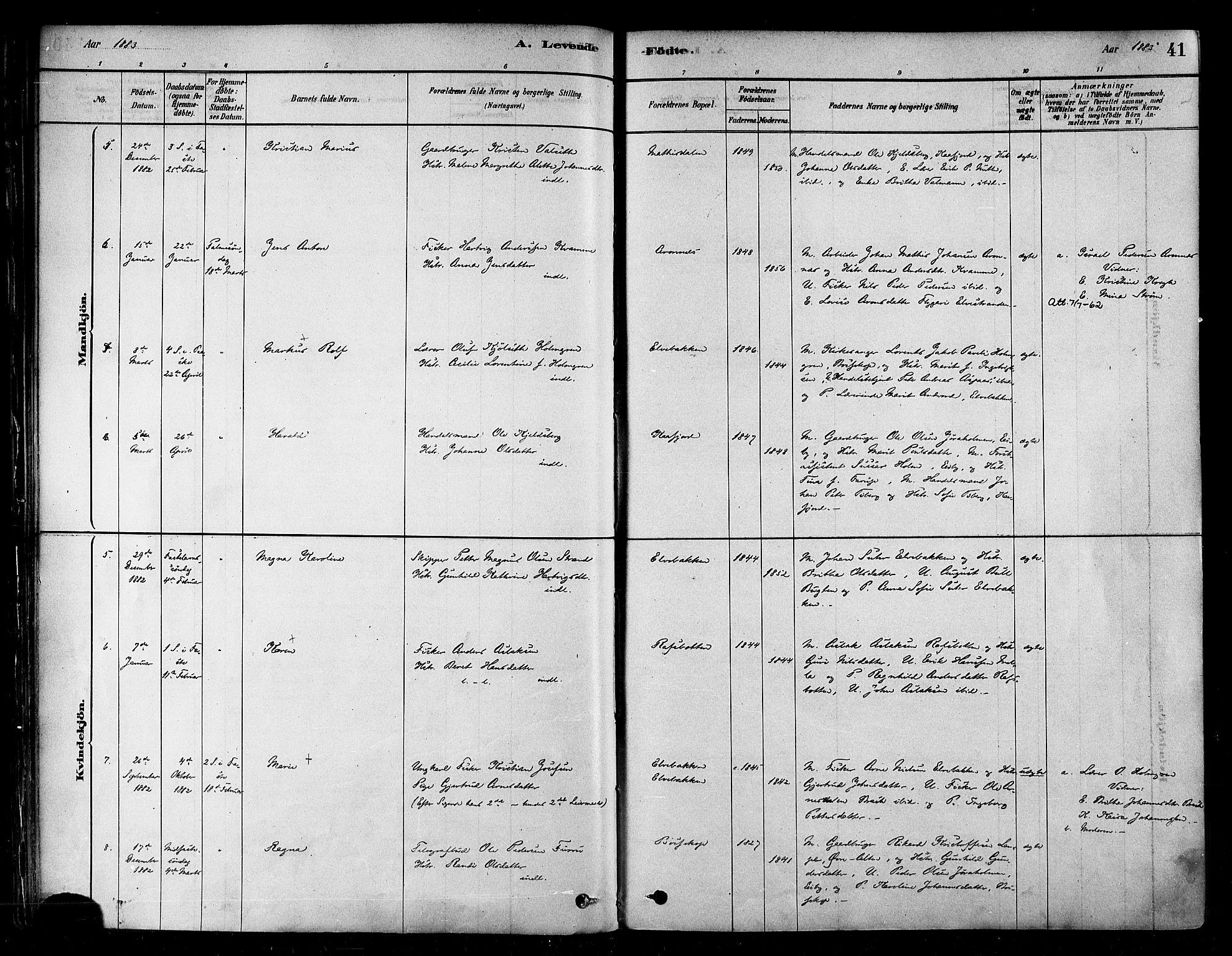 SATØ, Alta sokneprestembete, Parish register (official) no. 2, 1879-1892, p. 41