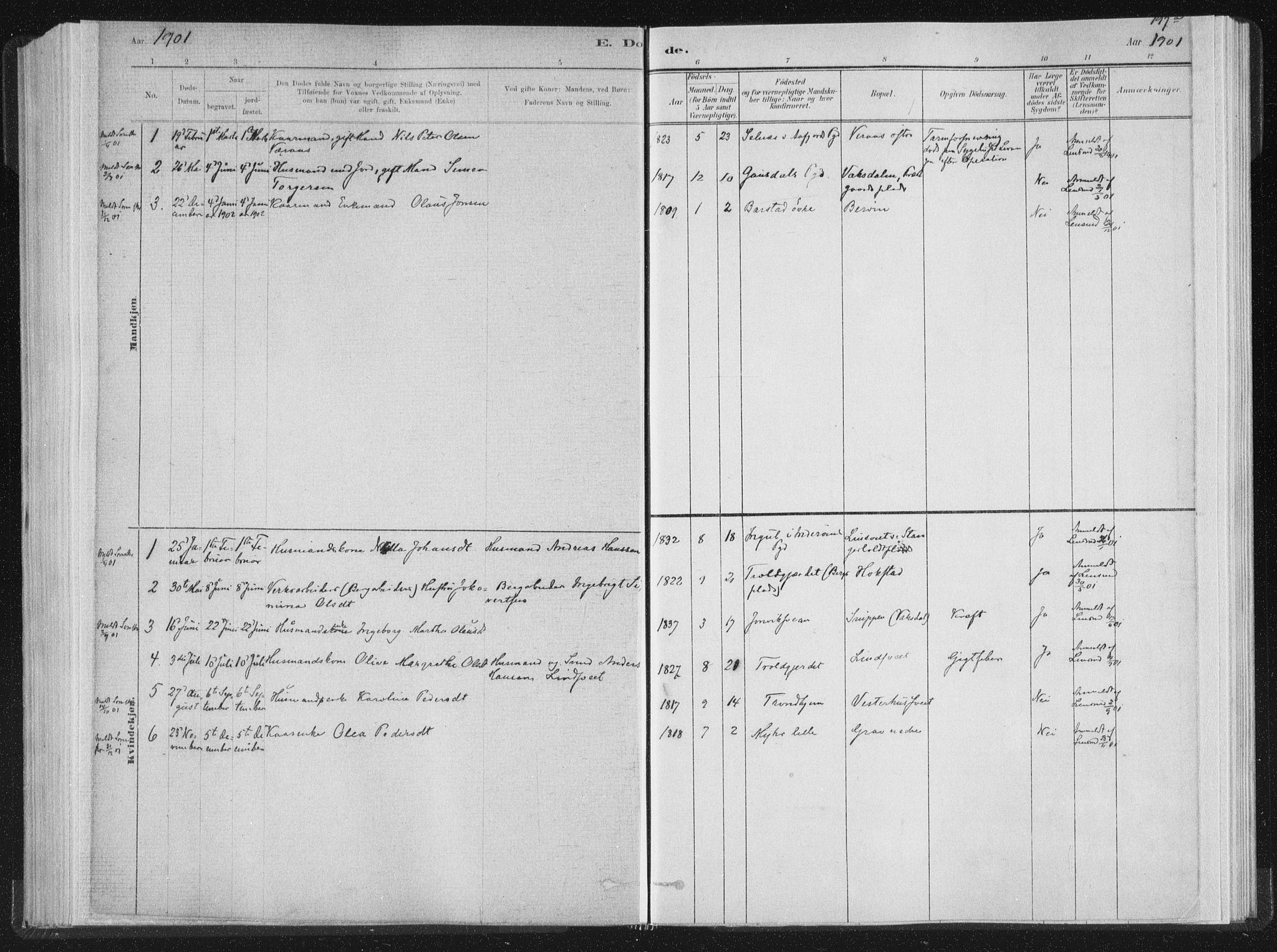 SAT, Ministerialprotokoller, klokkerbøker og fødselsregistre - Nord-Trøndelag, 722/L0220: Parish register (official) no. 722A07, 1881-1908, p. 197a
