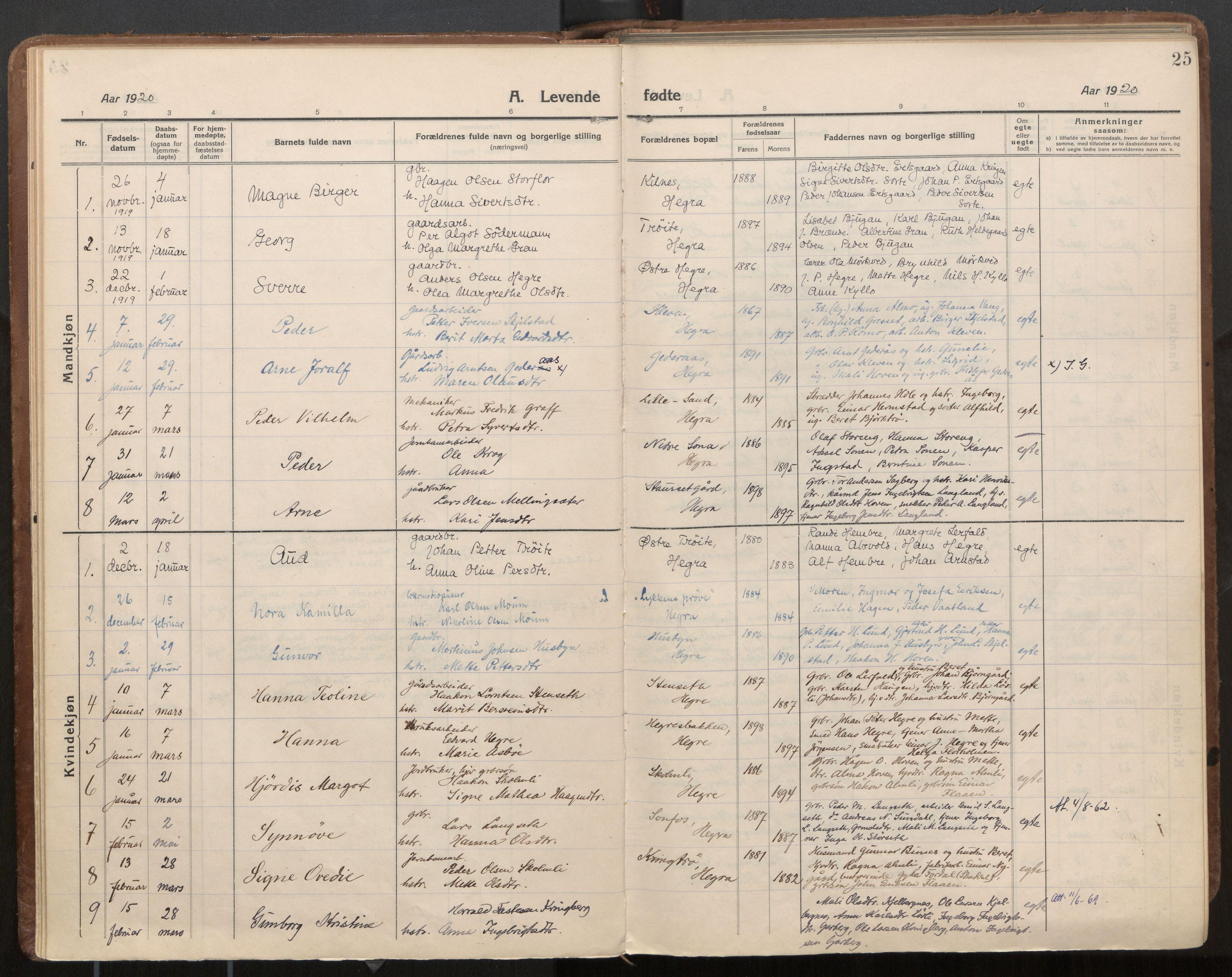 SAT, Ministerialprotokoller, klokkerbøker og fødselsregistre - Nord-Trøndelag, 703/L0037: Parish register (official) no. 703A10, 1915-1932, p. 25