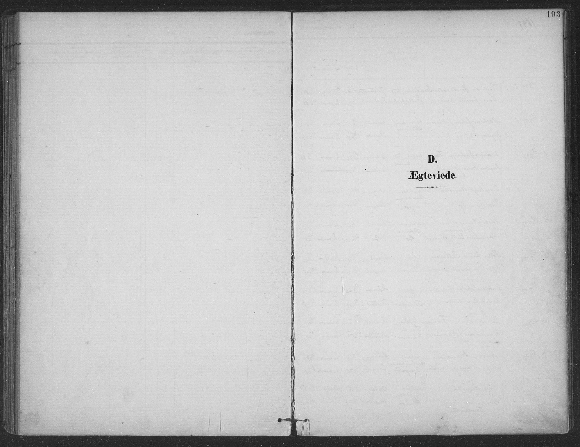 SAT, Ministerialprotokoller, klokkerbøker og fødselsregistre - Nordland, 863/L0899: Parish register (official) no. 863A11, 1897-1906, p. 193