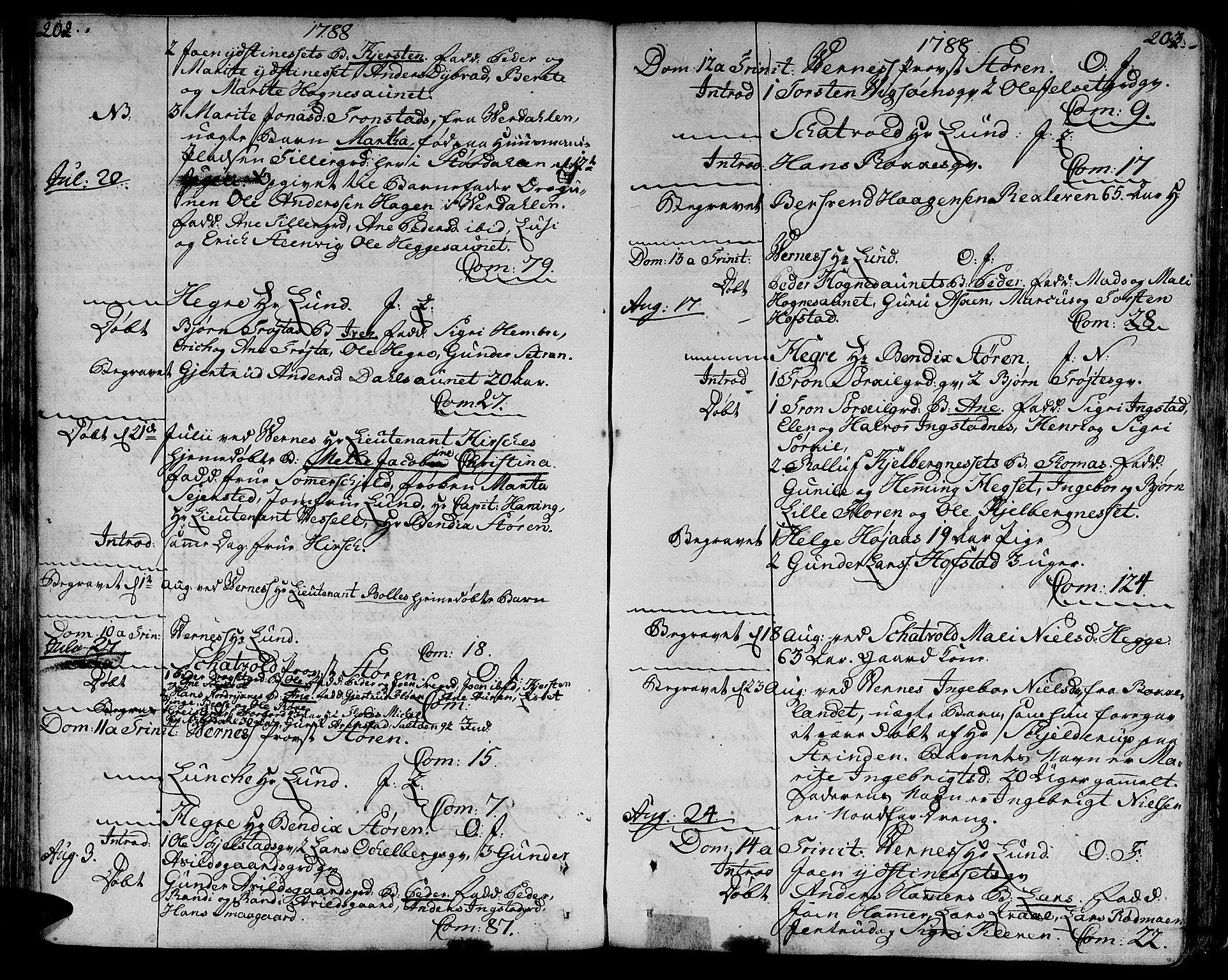 SAT, Ministerialprotokoller, klokkerbøker og fødselsregistre - Nord-Trøndelag, 709/L0059: Parish register (official) no. 709A06, 1781-1797, p. 202-203