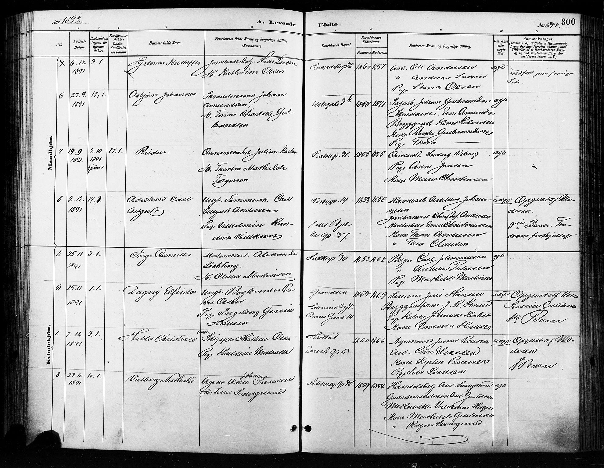SAO, Grønland prestekontor Kirkebøker, F/Fa/L0009: Parish register (official) no. 9, 1888-1893, p. 300
