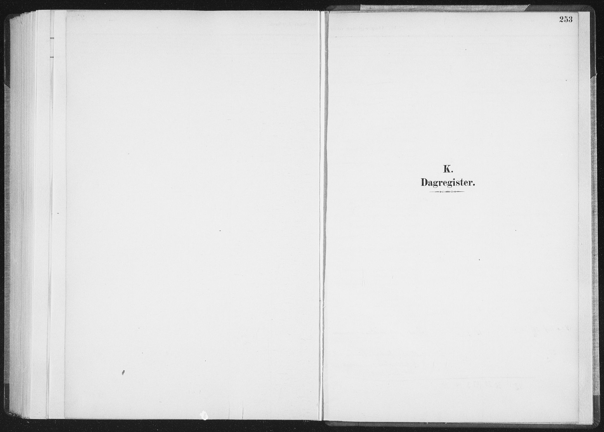SAT, Ministerialprotokoller, klokkerbøker og fødselsregistre - Nordland, 898/L1422: Parish register (official) no. 898A02, 1887-1908, p. 253