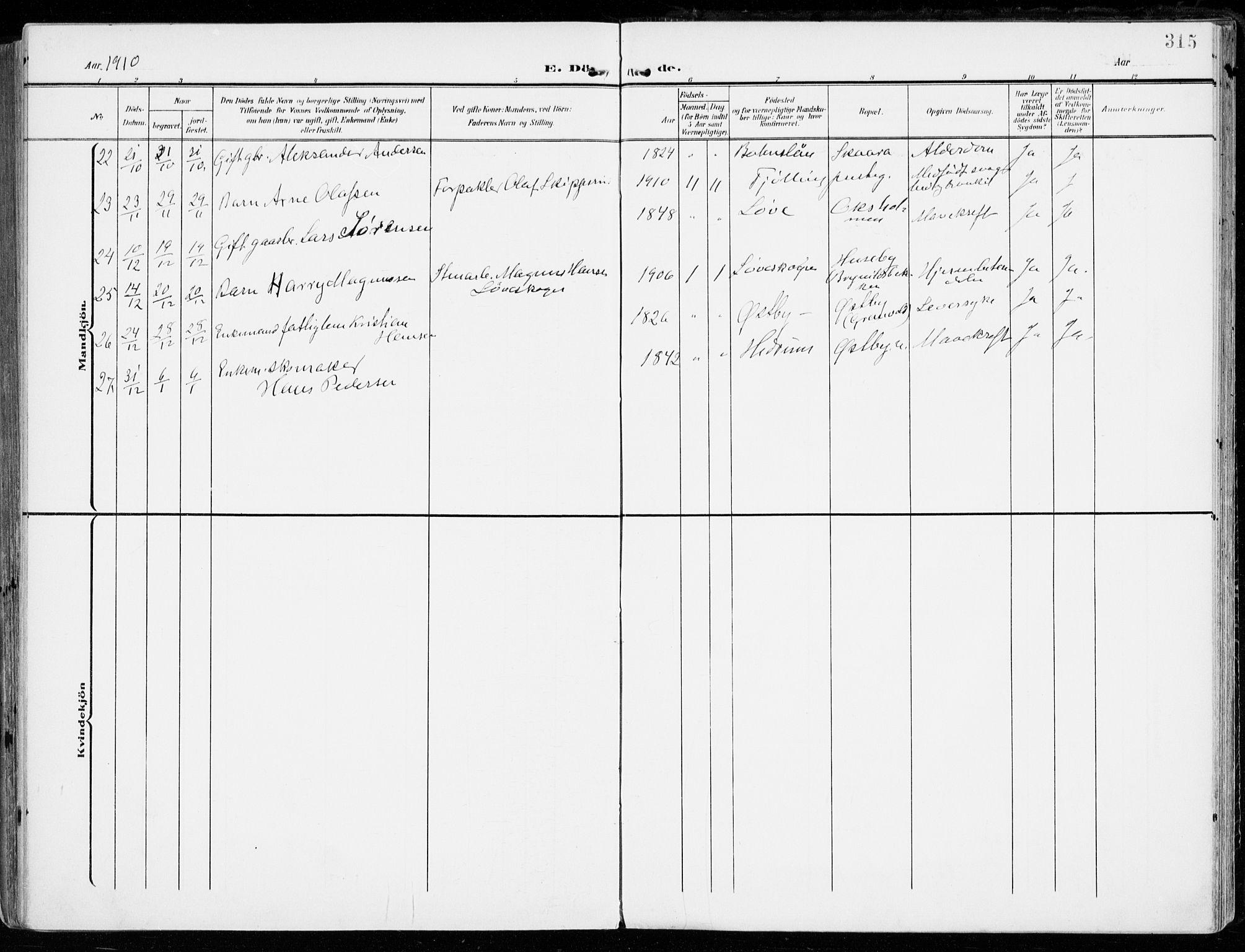SAKO, Tjølling kirkebøker, F/Fa/L0010: Parish register (official) no. 10, 1906-1923, p. 315