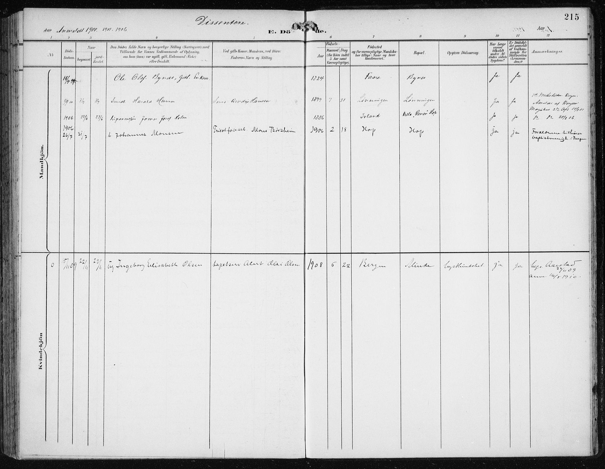 SAB, Birkeland Sokneprestembete, H/Haa: Parish register (official) no. A 3, 1900-1912, p. 215
