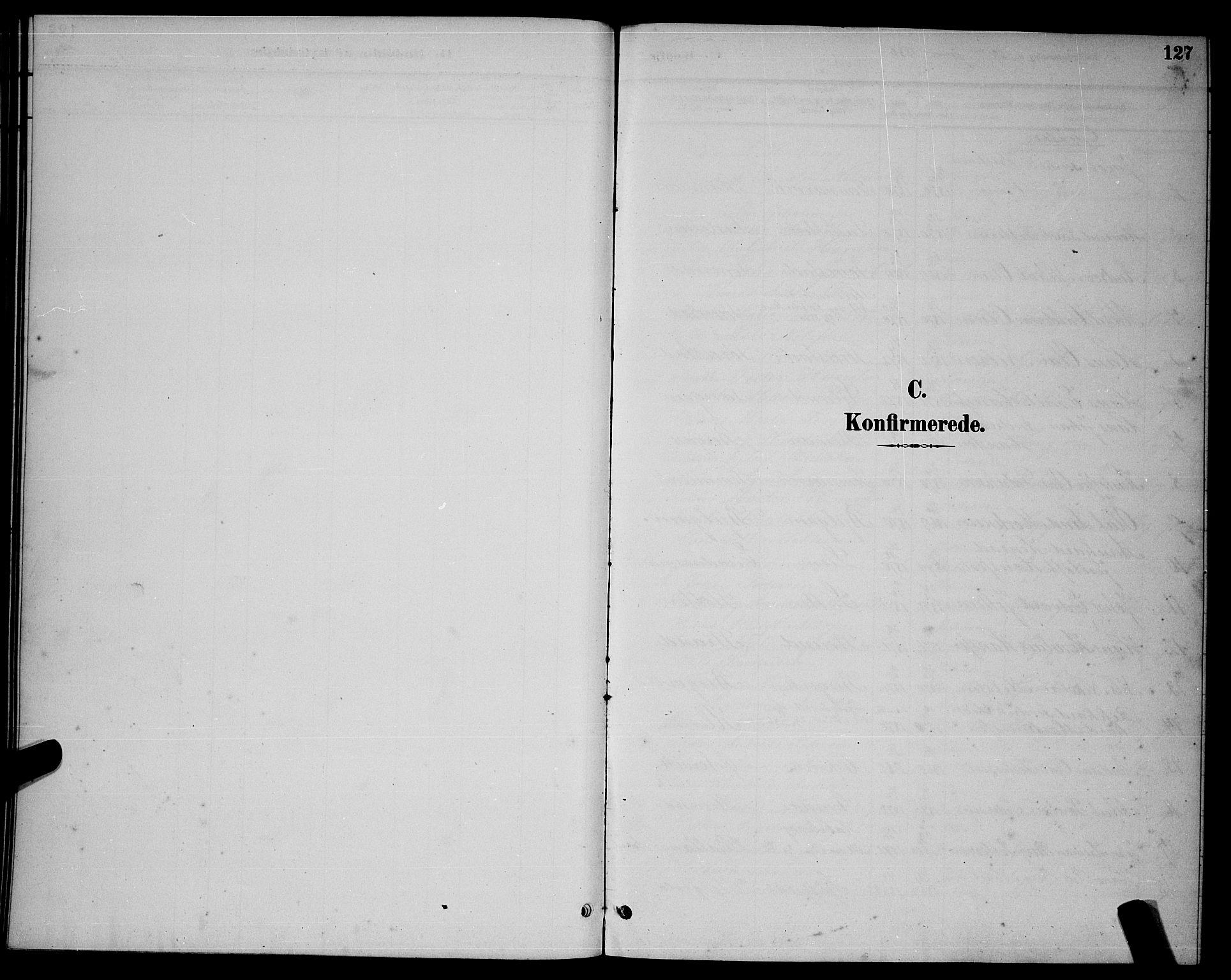 SAT, Ministerialprotokoller, klokkerbøker og fødselsregistre - Nordland, 863/L0914: Parish register (copy) no. 863C04, 1886-1897, p. 127