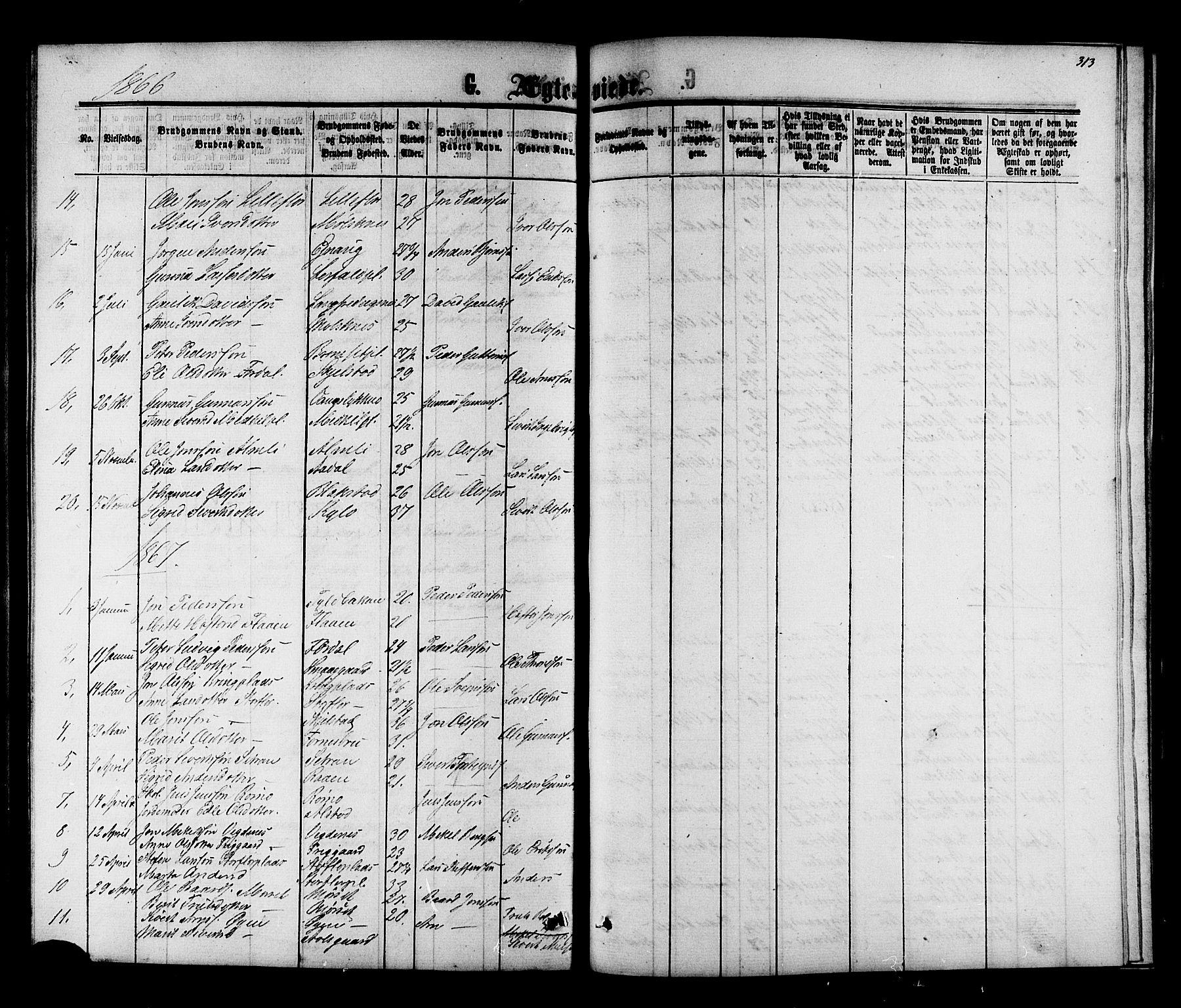 SAT, Ministerialprotokoller, klokkerbøker og fødselsregistre - Nord-Trøndelag, 703/L0038: Parish register (copy) no. 703C01, 1864-1870, p. 313