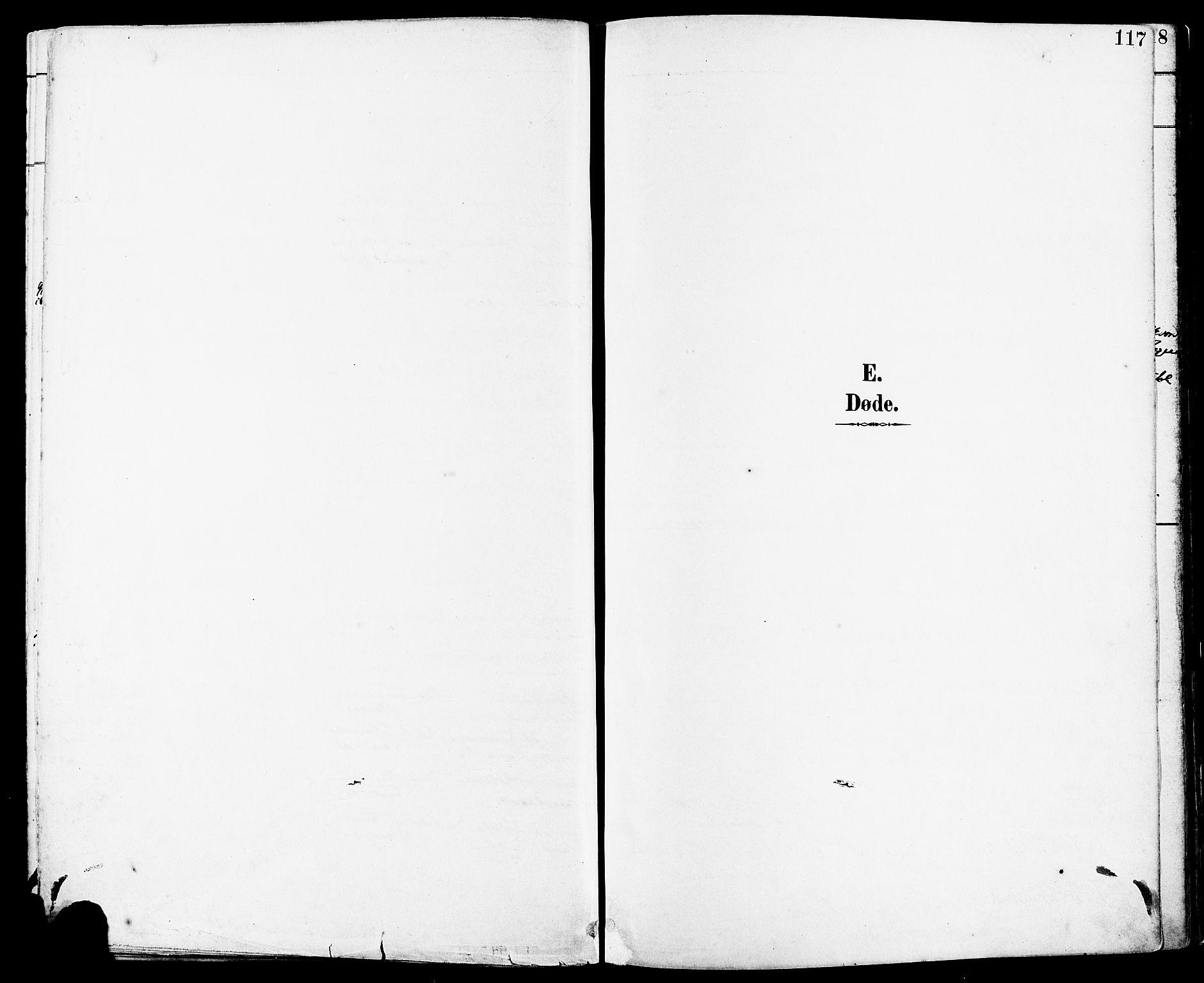 SAST, Høyland sokneprestkontor, 30BA/L0014: Parish register (official) no. A 12, 1890-1898, p. 117