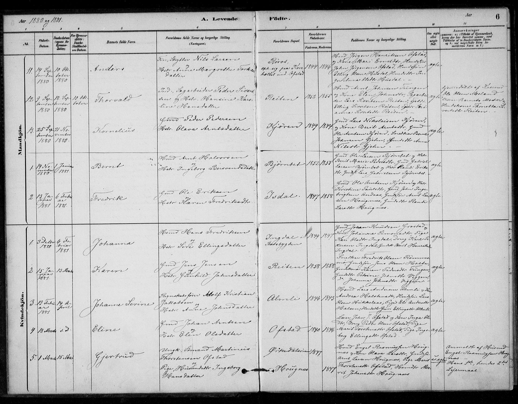 SAT, Ministerialprotokoller, klokkerbøker og fødselsregistre - Sør-Trøndelag, 670/L0836: Parish register (official) no. 670A01, 1879-1904, p. 6