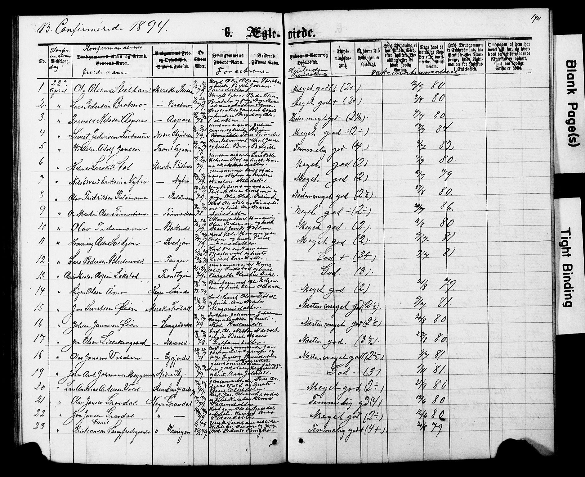 SAT, Ministerialprotokoller, klokkerbøker og fødselsregistre - Nord-Trøndelag, 706/L0049: Parish register (copy) no. 706C01, 1864-1895, p. 190