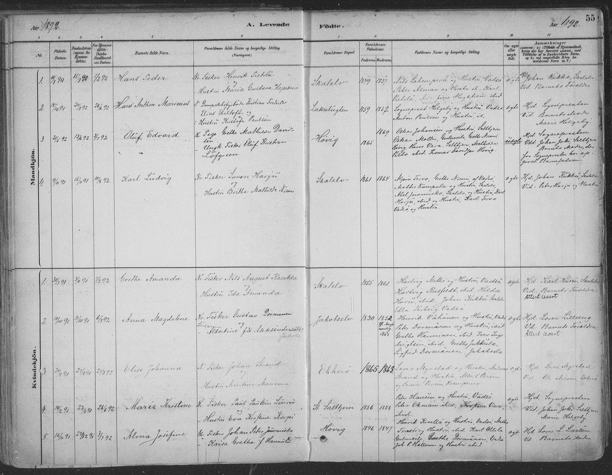 SATØ, Vadsø sokneprestkontor, H/Ha/L0009kirke: Parish register (official) no. 9, 1881-1917, p. 55