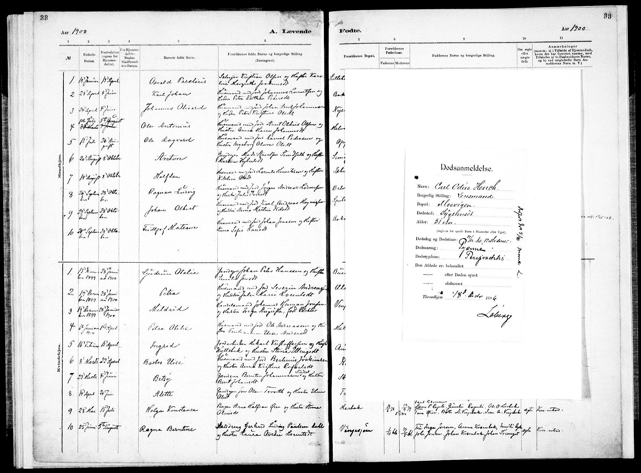SAT, Ministerialprotokoller, klokkerbøker og fødselsregistre - Nord-Trøndelag, 733/L0325: Parish register (official) no. 733A04, 1884-1908, p. 33