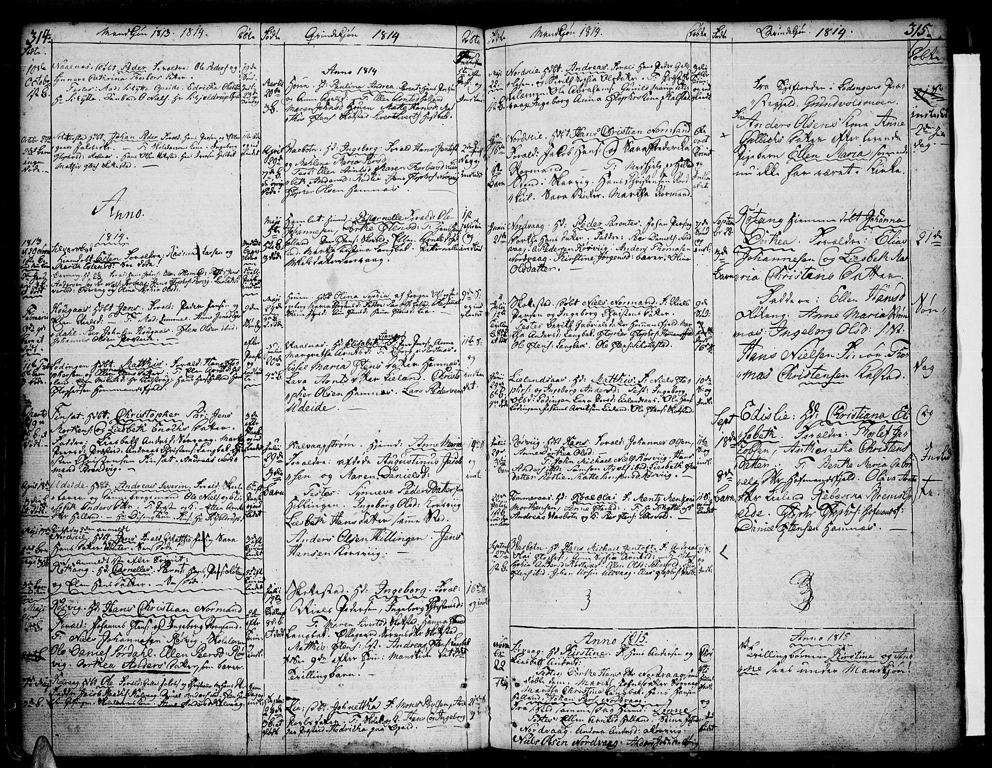 SAT, Ministerialprotokoller, klokkerbøker og fødselsregistre - Nordland, 859/L0841: Parish register (official) no. 859A01, 1766-1821, p. 314-315