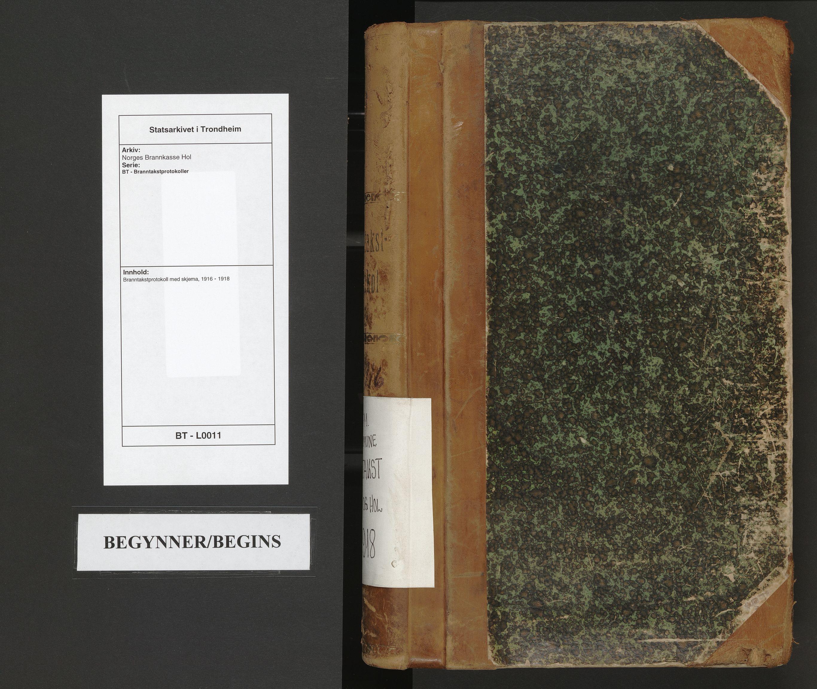 SAT, Norges Brannkasse Hol, BT/L0011: Branntakstprotokoll med skjema, 1916-1918