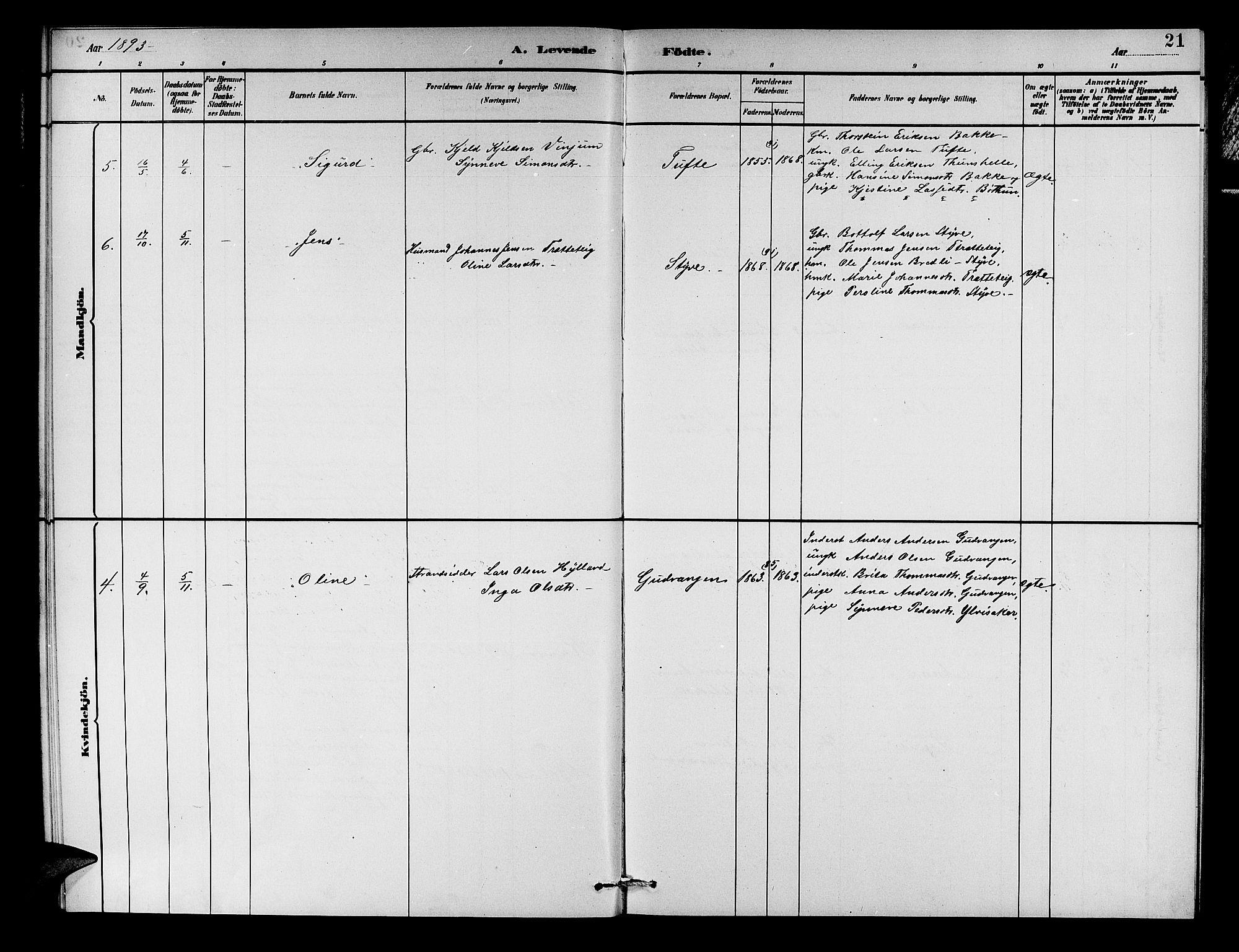 SAB, Aurland sokneprestembete, H/Hb/Hbc/L0002: Parish register (copy) no. C 2, 1883-1900, p. 21