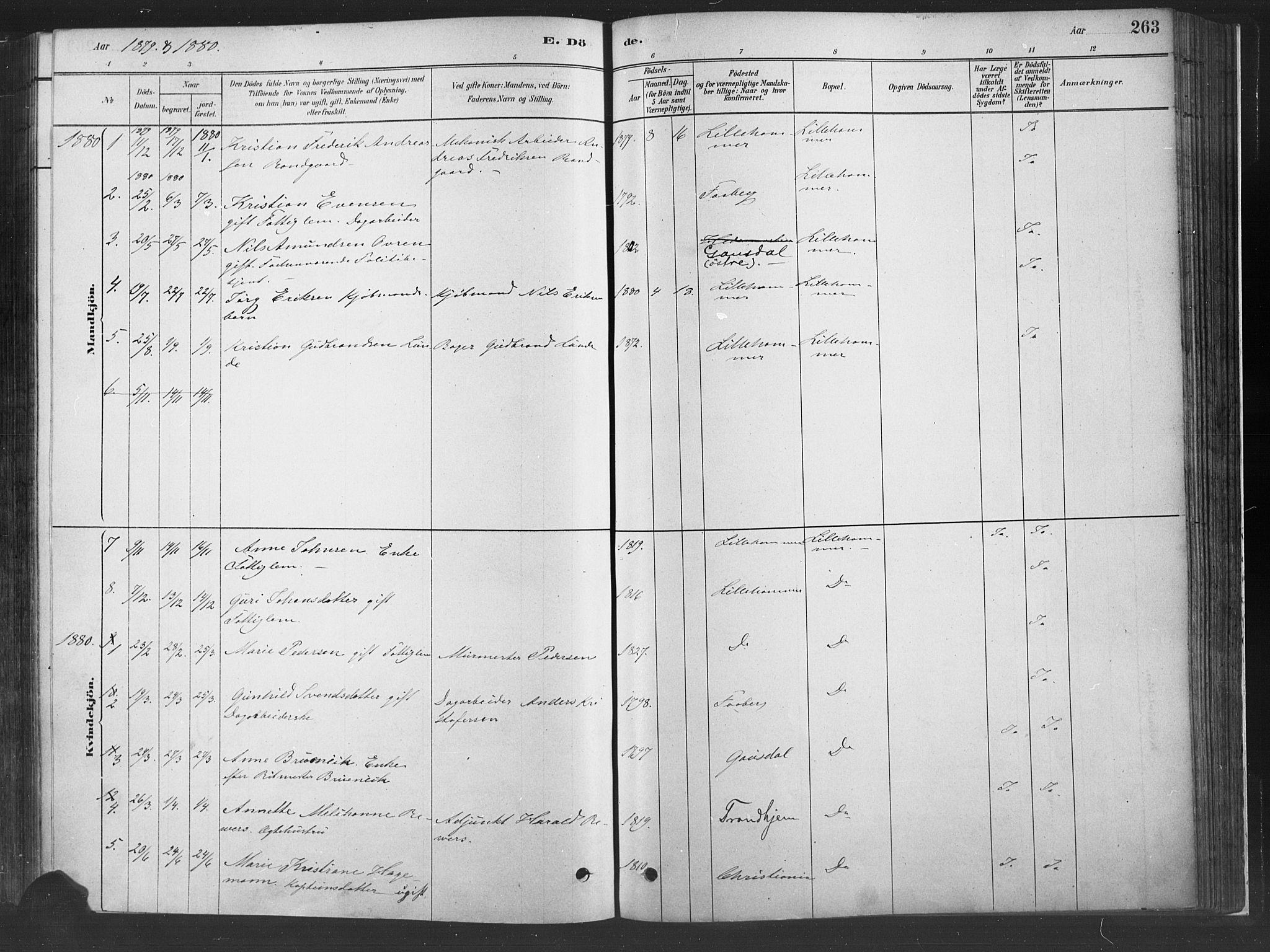 SAH, Fåberg prestekontor, H/Ha/Haa/L0010: Parish register (official) no. 10, 1879-1900, p. 263