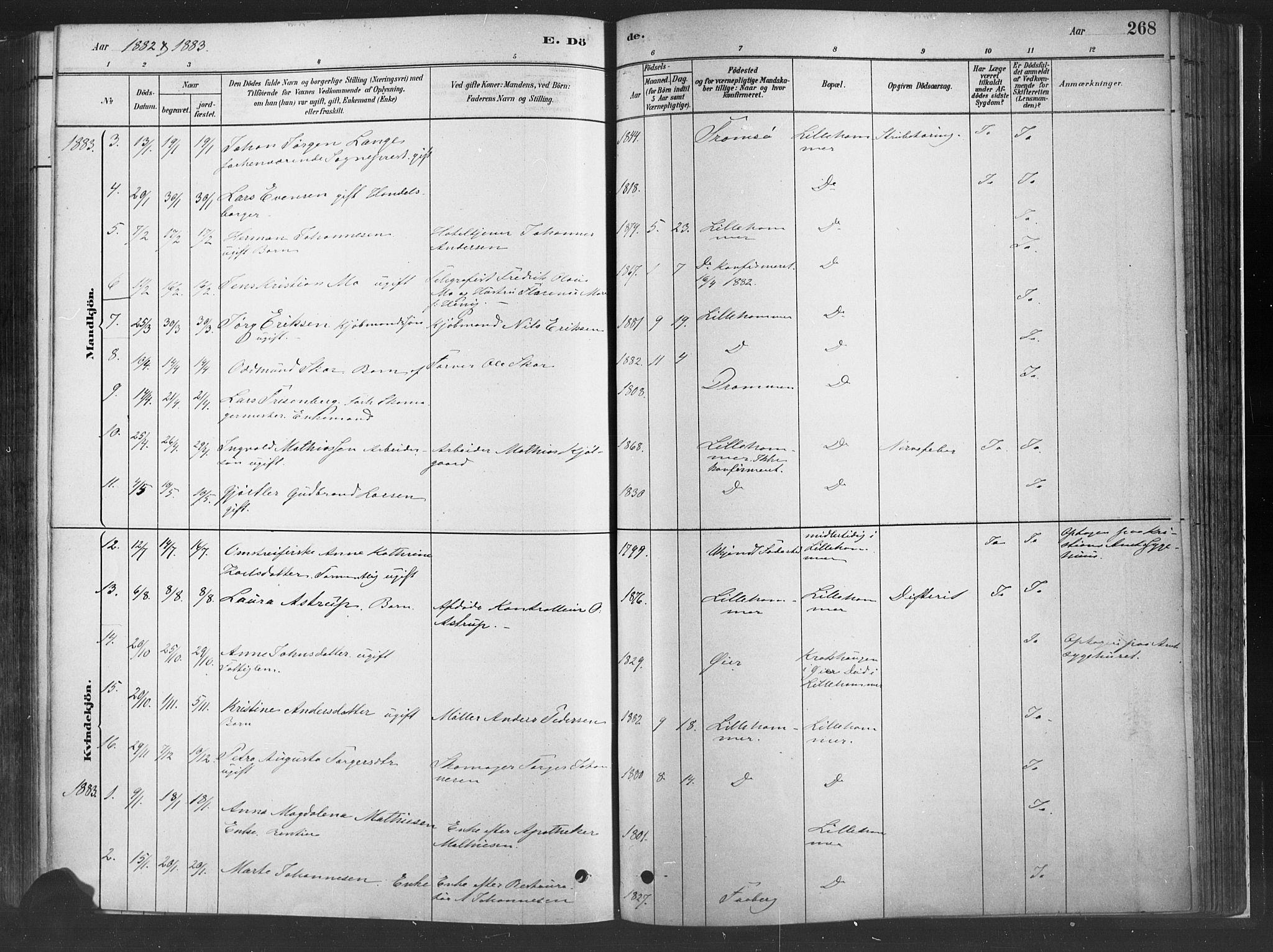 SAH, Fåberg prestekontor, H/Ha/Haa/L0010: Parish register (official) no. 10, 1879-1900, p. 268