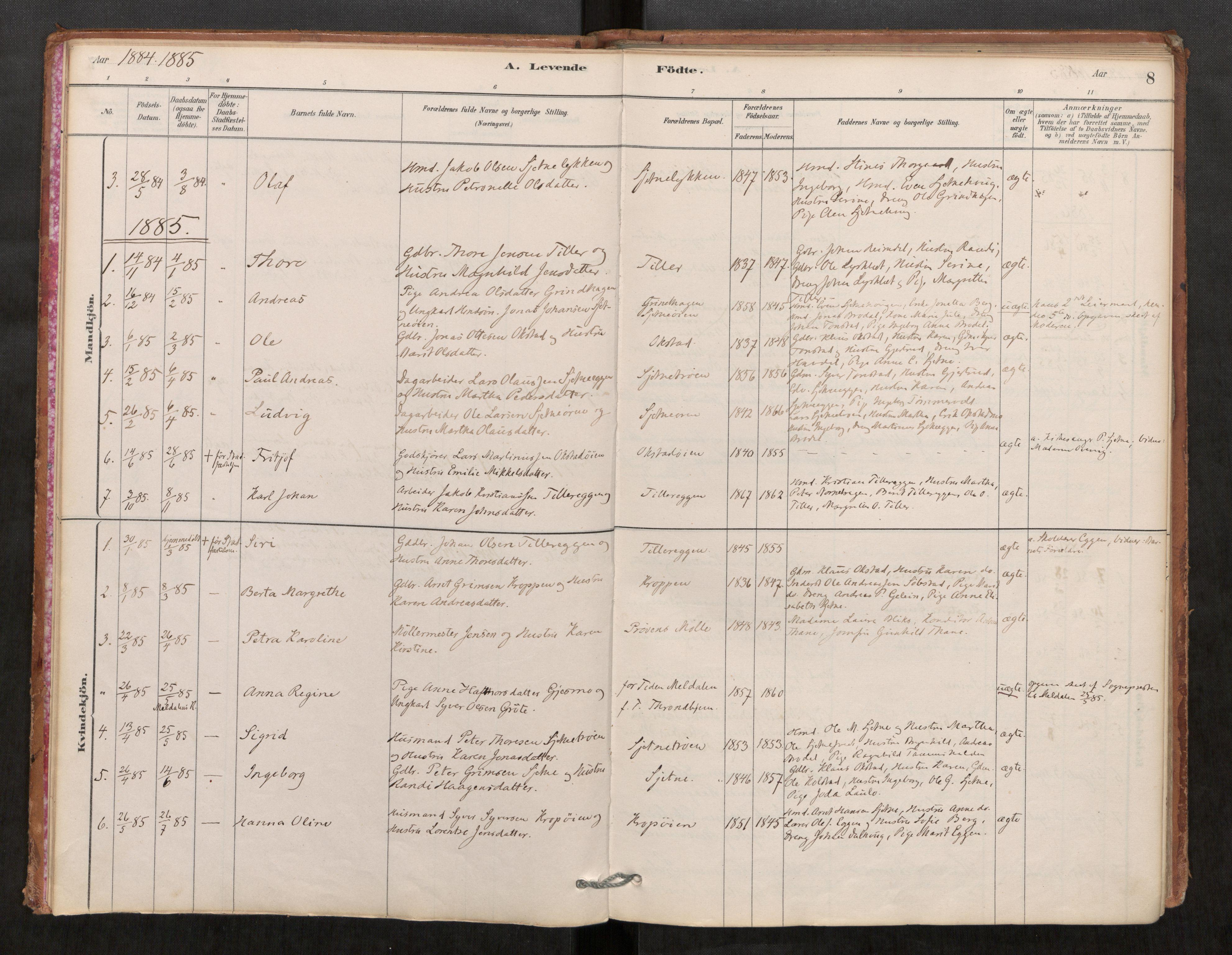 SAT, Klæbu sokneprestkontor, Parish register (official) no. 1, 1880-1900, p. 8