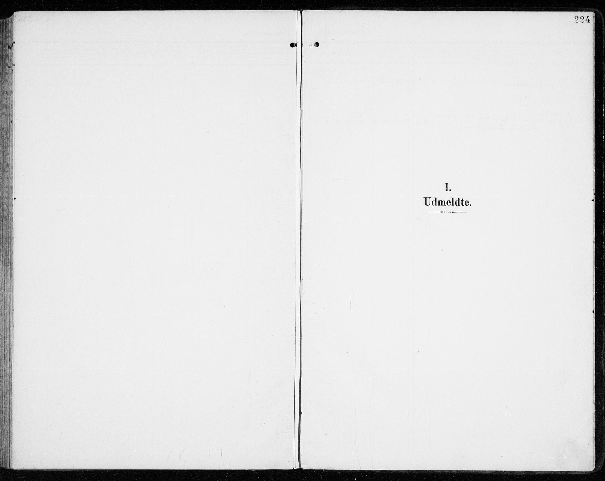 SAH, Vardal prestekontor, H/Ha/Haa/L0016: Parish register (official) no. 16, 1904-1916, p. 224
