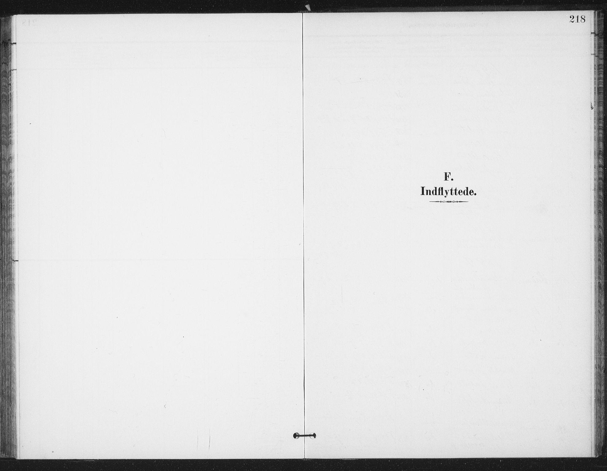 SAT, Ministerialprotokoller, klokkerbøker og fødselsregistre - Sør-Trøndelag, 658/L0723: Parish register (official) no. 658A02, 1897-1912, p. 218