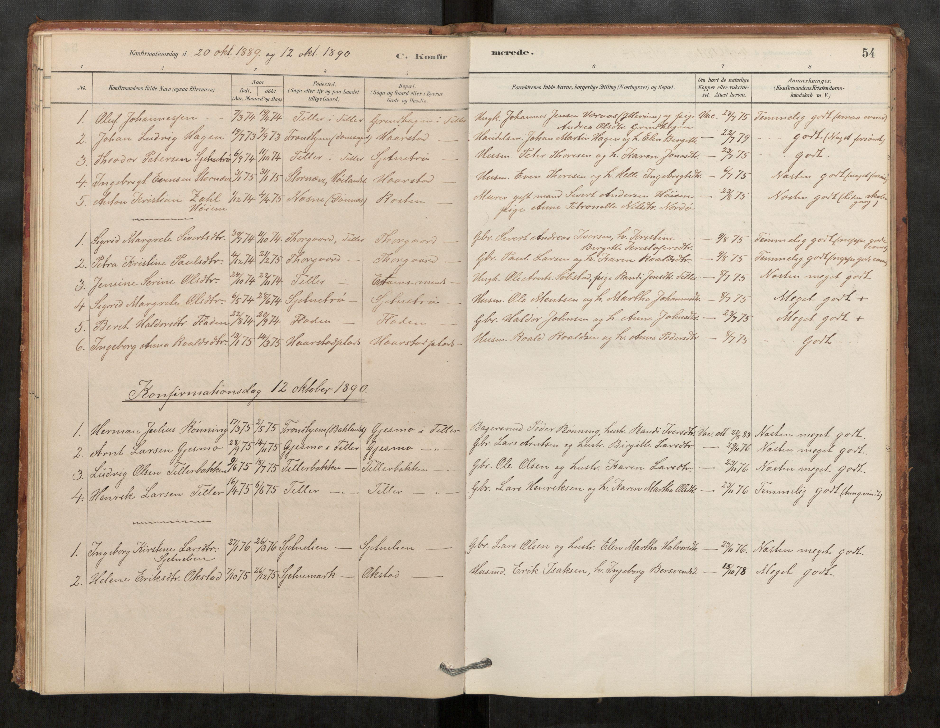 SAT, Klæbu sokneprestkontor, Parish register (official) no. 1, 1880-1900, p. 54
