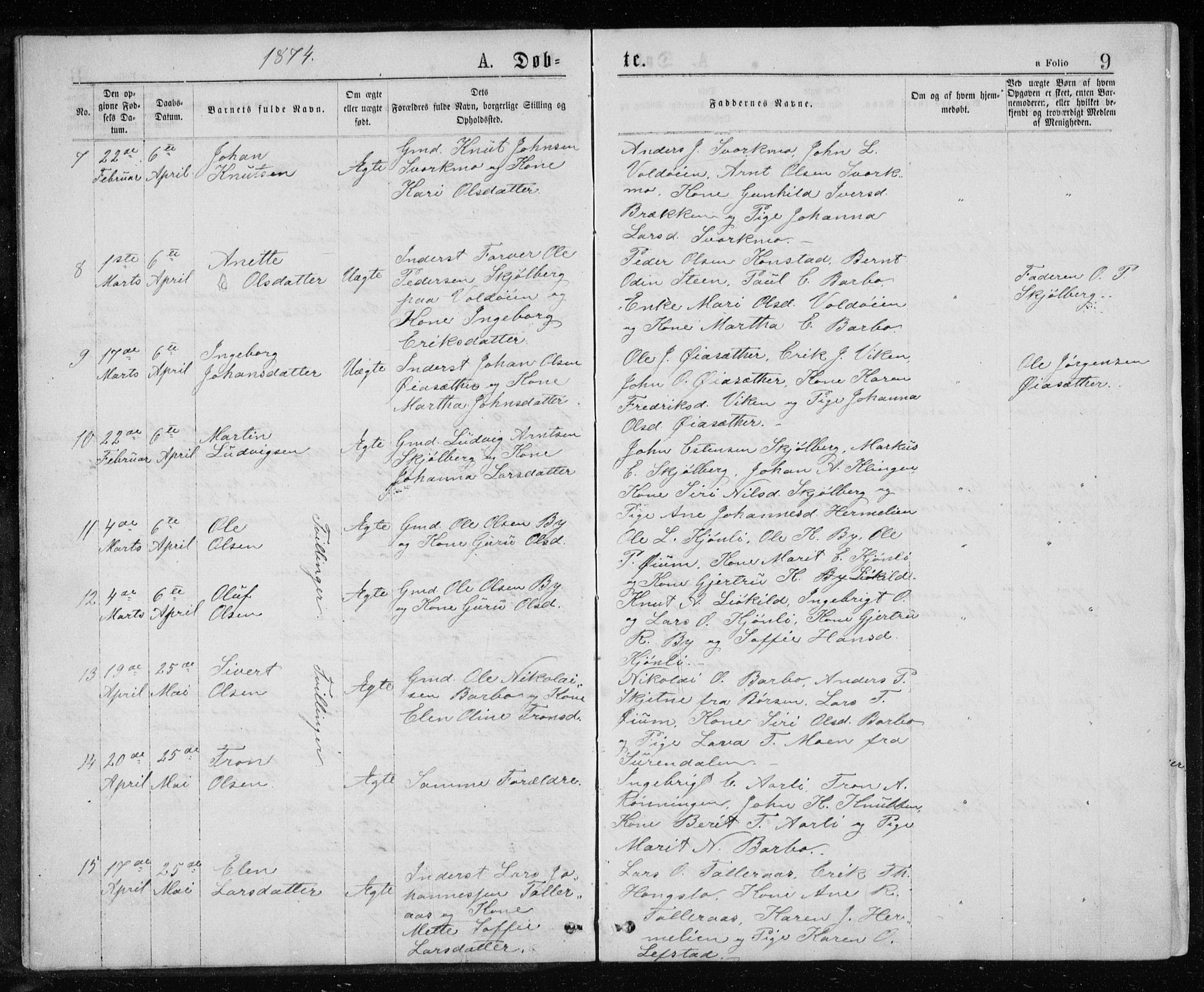 SAT, Ministerialprotokoller, klokkerbøker og fødselsregistre - Sør-Trøndelag, 671/L0843: Parish register (copy) no. 671C02, 1873-1892, p. 9