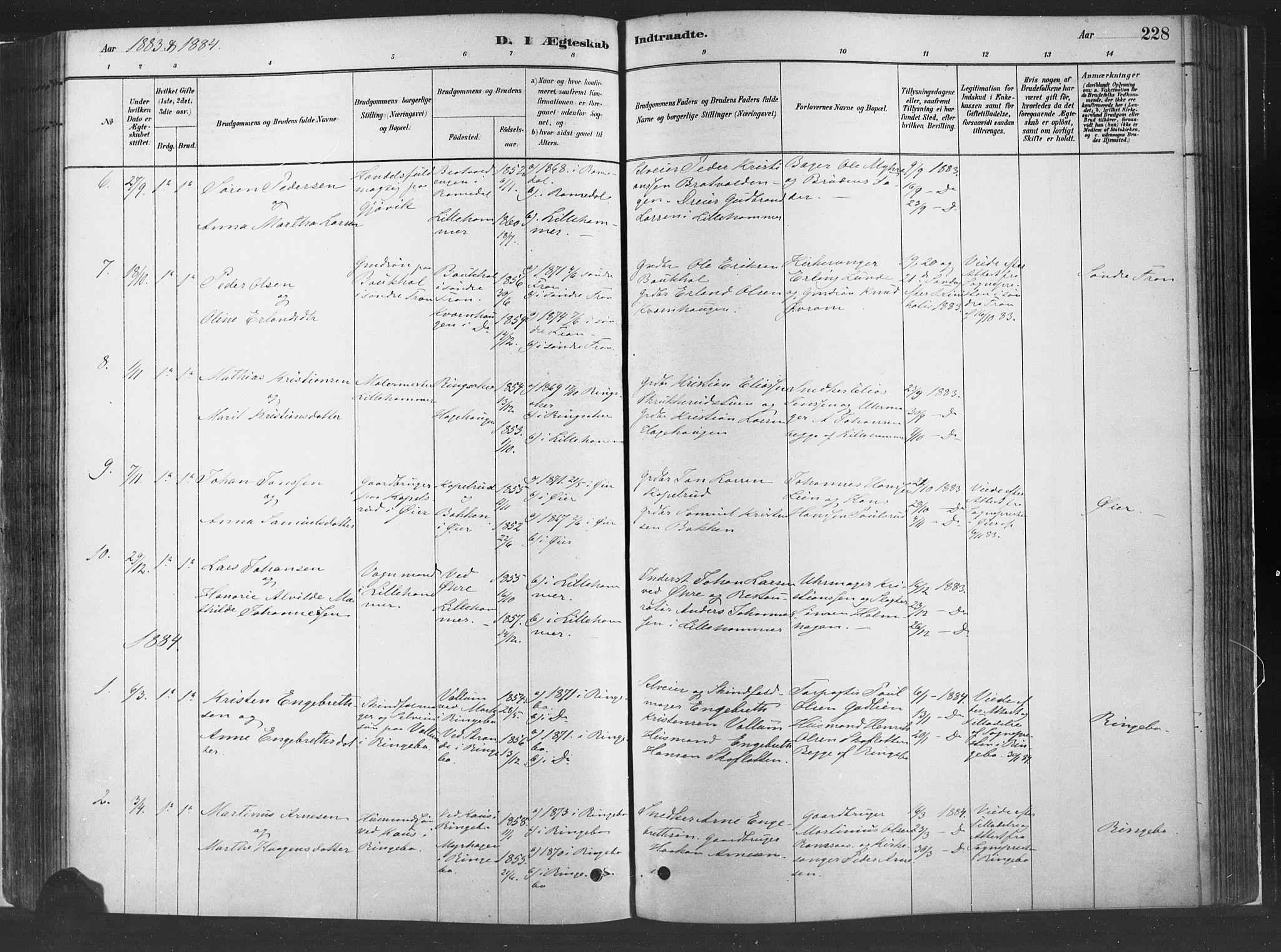 SAH, Fåberg prestekontor, H/Ha/Haa/L0010: Parish register (official) no. 10, 1879-1900, p. 228
