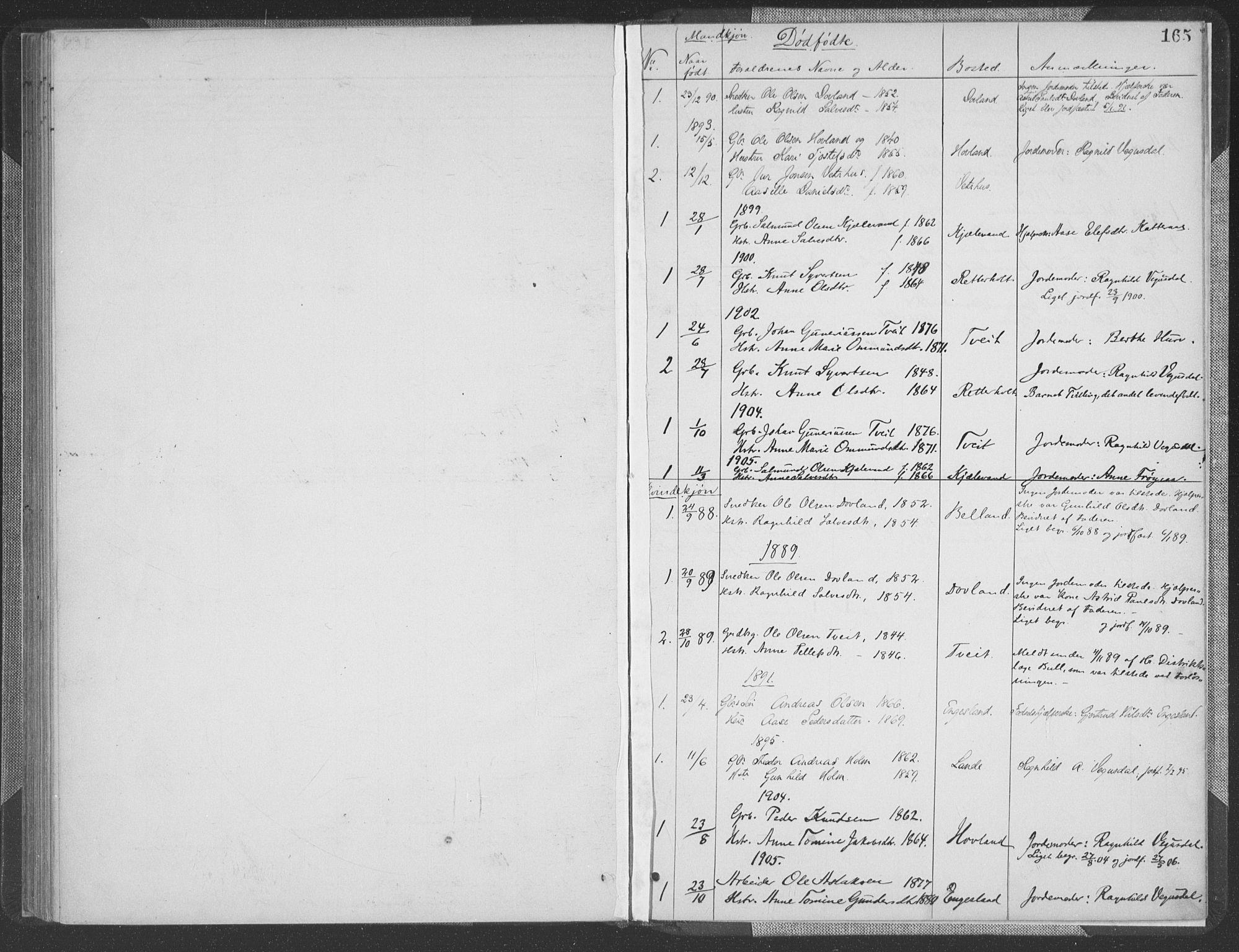 SAK, Herefoss sokneprestkontor, F/Fa/Fab/L0004: Parish register (official) no. A 4, 1887-1909, p. 165