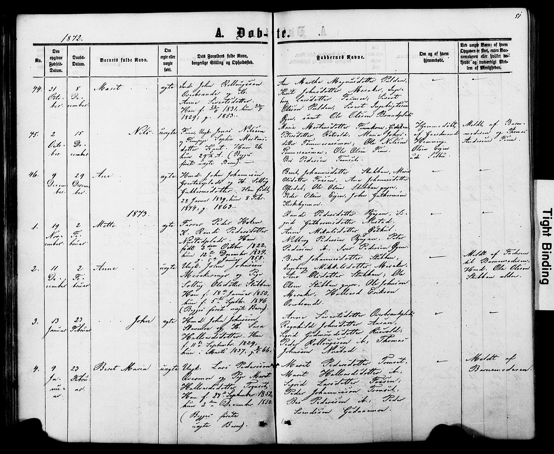 SAT, Ministerialprotokoller, klokkerbøker og fødselsregistre - Nord-Trøndelag, 706/L0049: Parish register (copy) no. 706C01, 1864-1895, p. 51