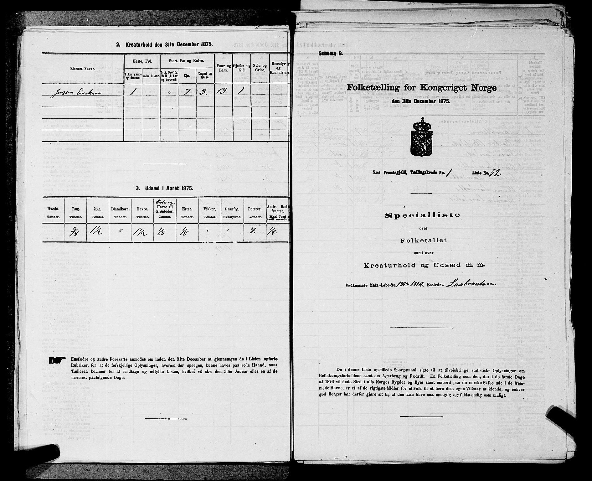 SAKO, 1875 census for 0616P Nes, 1875, p. 109