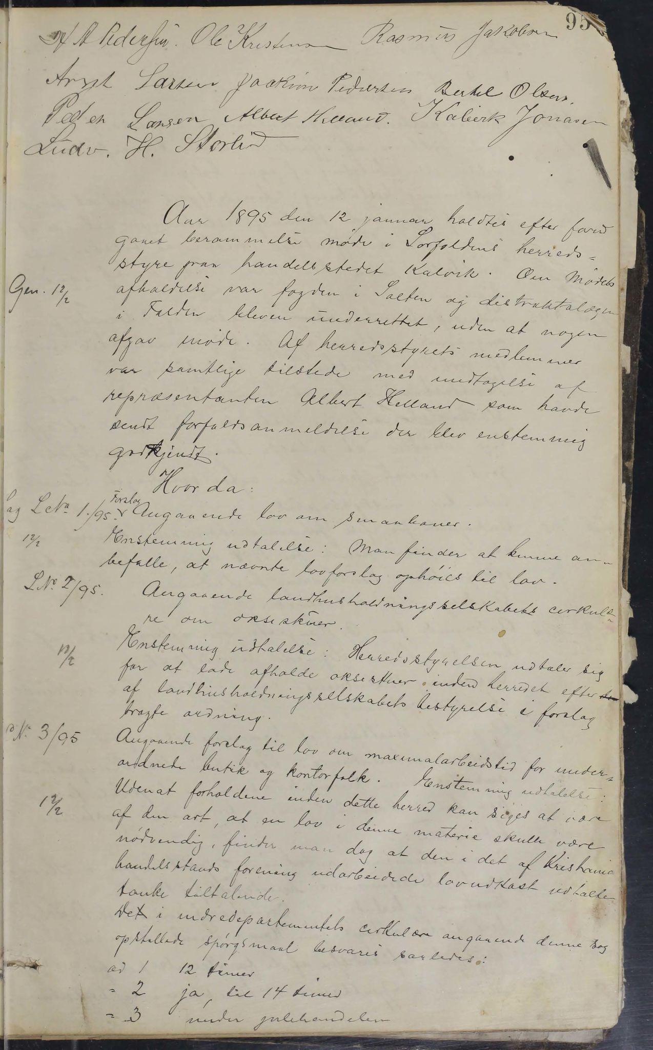 AIN, Sørfold kommune. Formannskap, 100/L0001: Forhandlingsprotokol for Sørfoldens formandskab, 1885-1902, p. 95