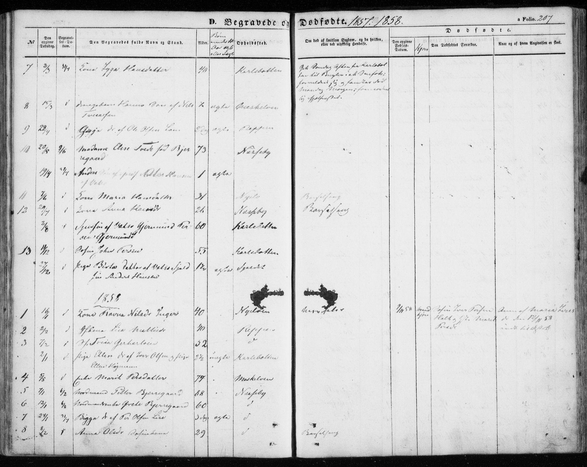 SATØ, Nesseby sokneprestkontor, H/Ha/L0002kirke: Parish register (official) no. 2, 1856-1864, p. 207