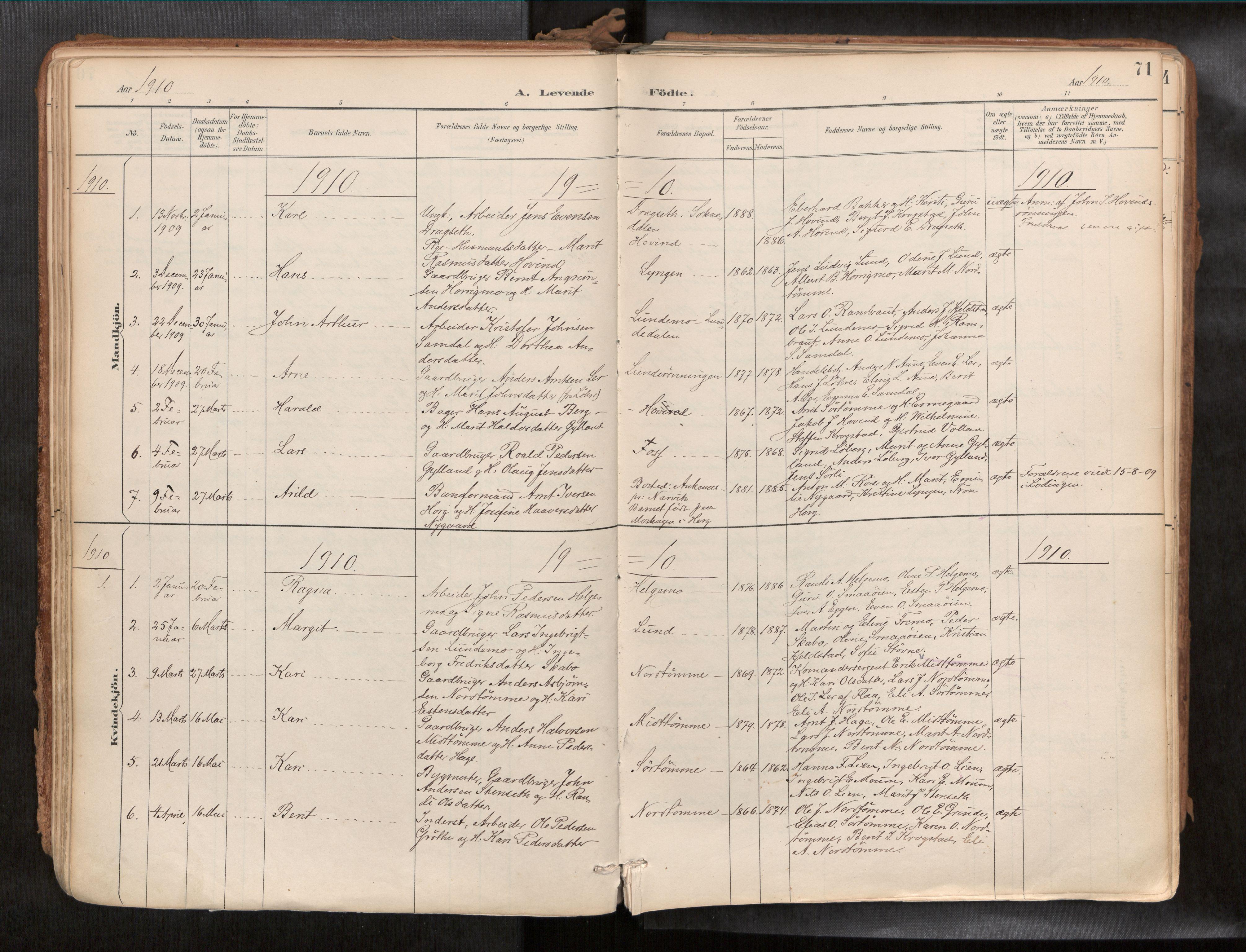SAT, Ministerialprotokoller, klokkerbøker og fødselsregistre - Sør-Trøndelag, 692/L1105b: Parish register (official) no. 692A06, 1891-1934, p. 71