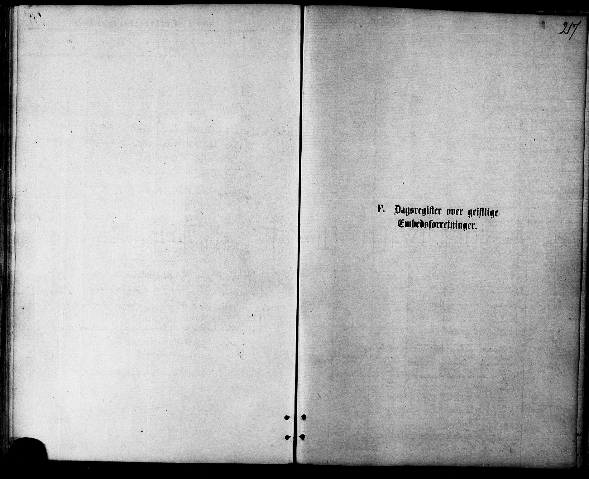 SATØ, Balsfjord sokneprestembete, Parish register (official) no. 4, 1871-1883, p. 217