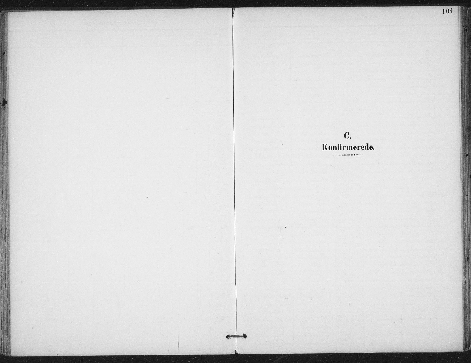 SAT, Ministerialprotokoller, klokkerbøker og fødselsregistre - Nord-Trøndelag, 703/L0031: Parish register (official) no. 703A04, 1893-1914, p. 104