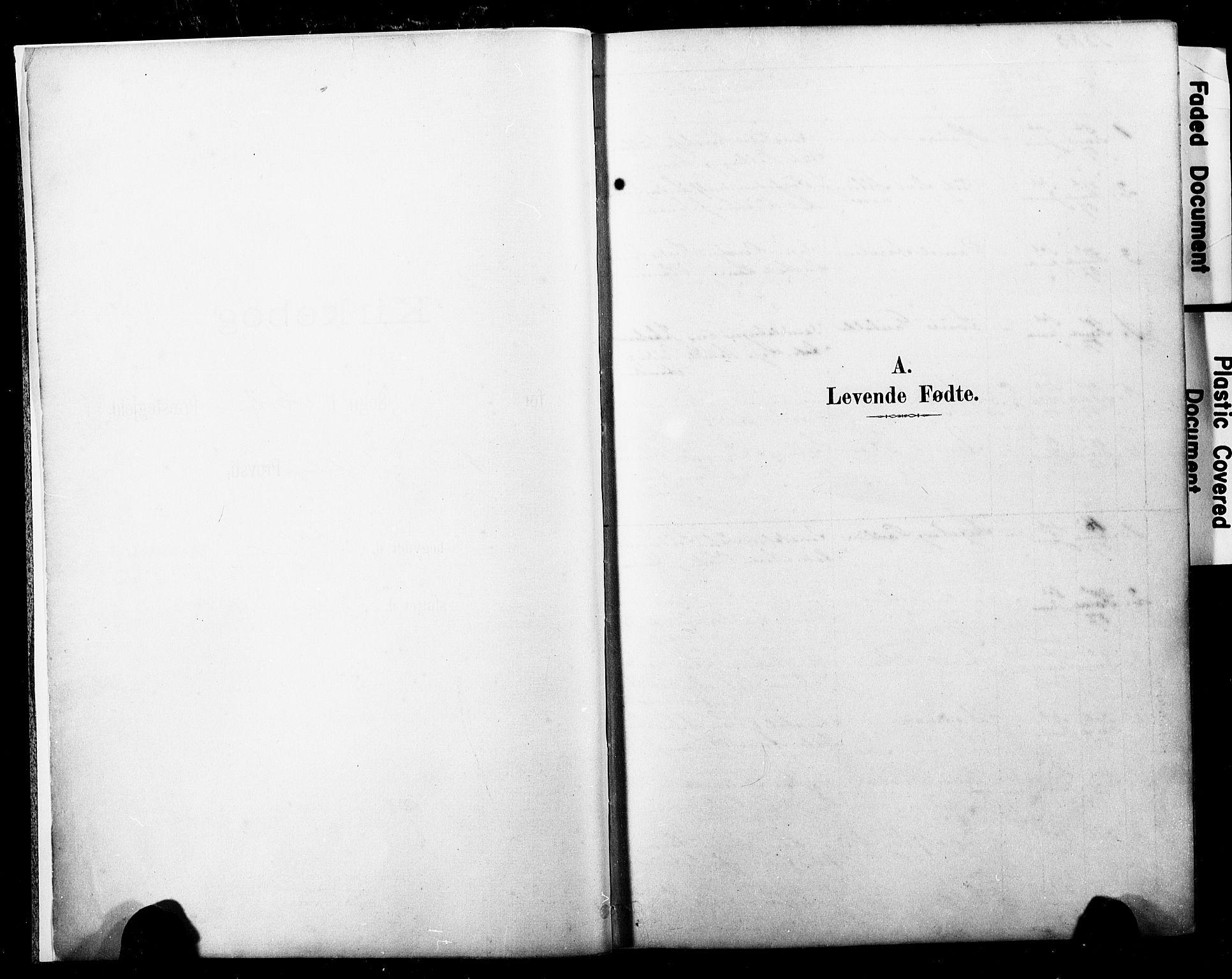SAKO, Horten kirkebøker, F/Fa/L0004: Parish register (official) no. 4, 1888-1895