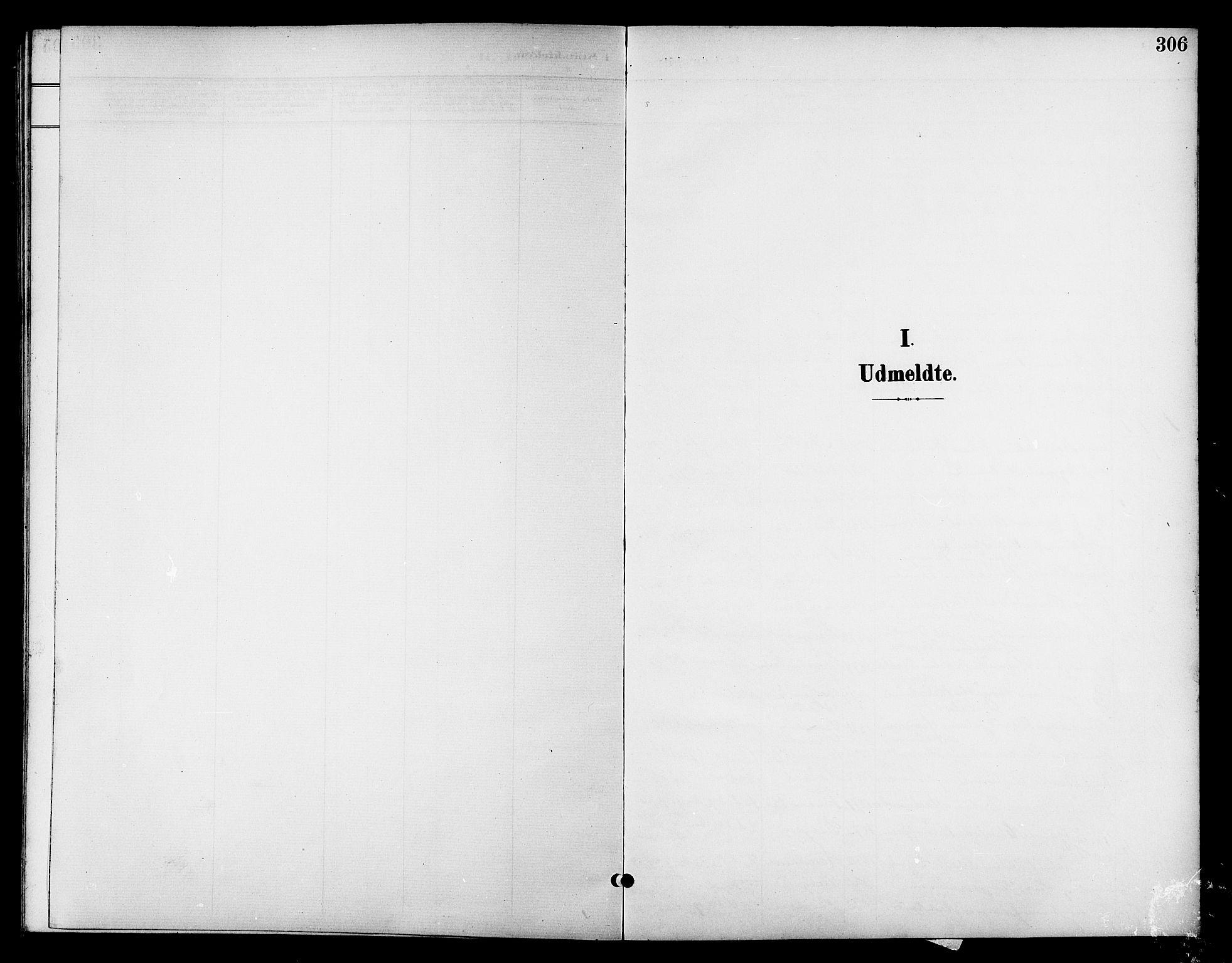 SAT, Ministerialprotokoller, klokkerbøker og fødselsregistre - Nordland, 801/L0033: Parish register (copy) no. 801C08, 1898-1910, p. 306