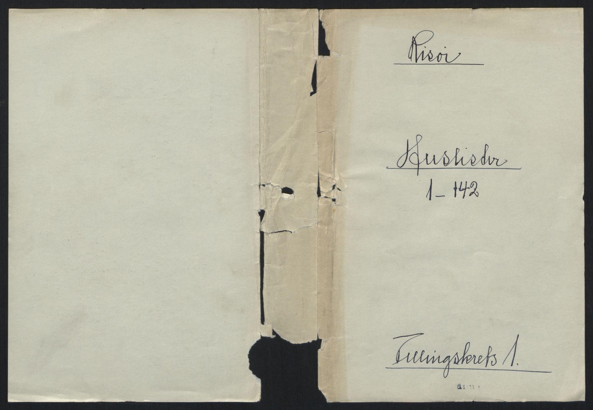 RA, 1891 census for 0901 Risør, 1891, p. 21