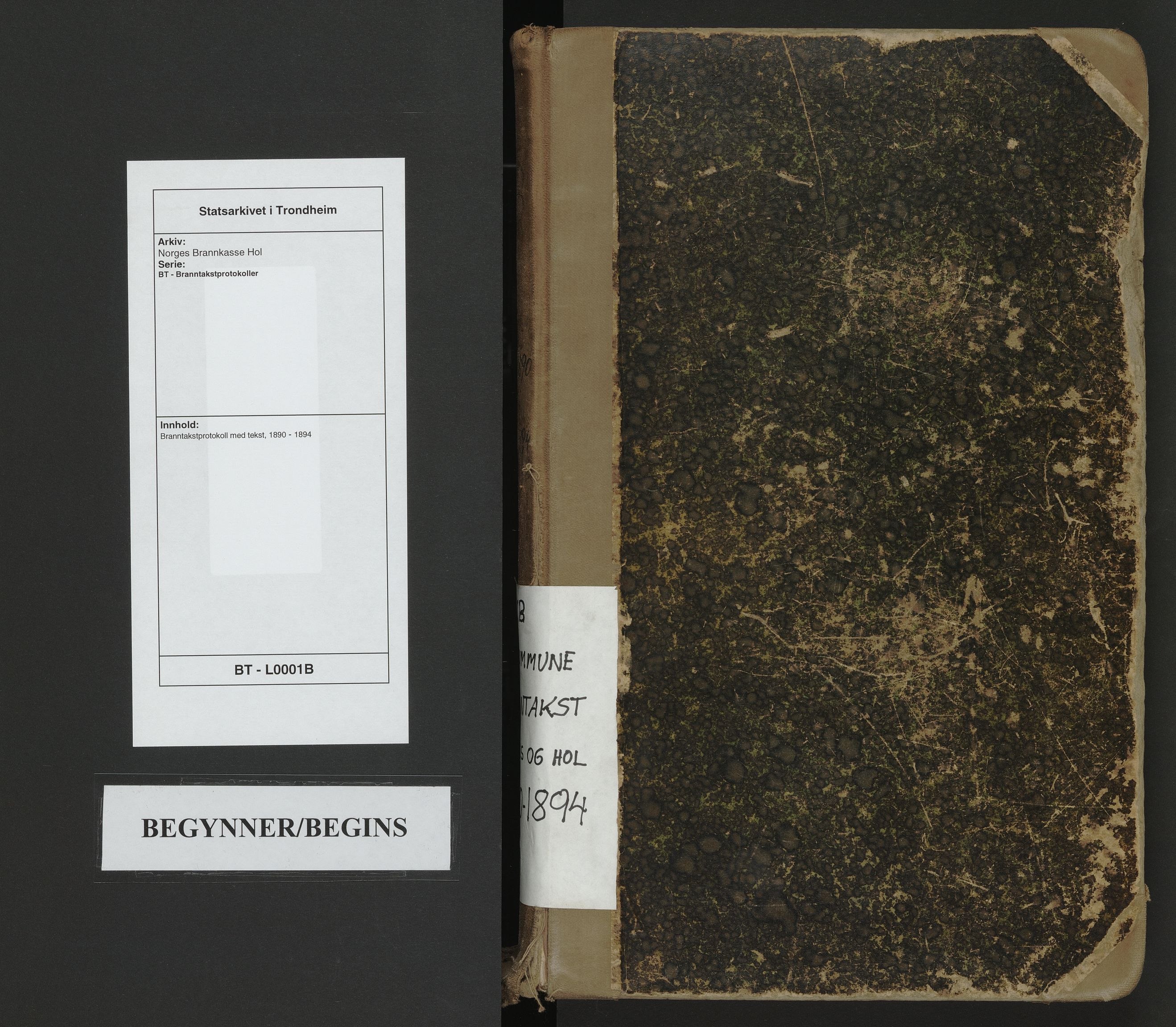 SAT, Norges Brannkasse Hol, BT/L0001B: Branntakstprotokoll med tekst, 1890-1894