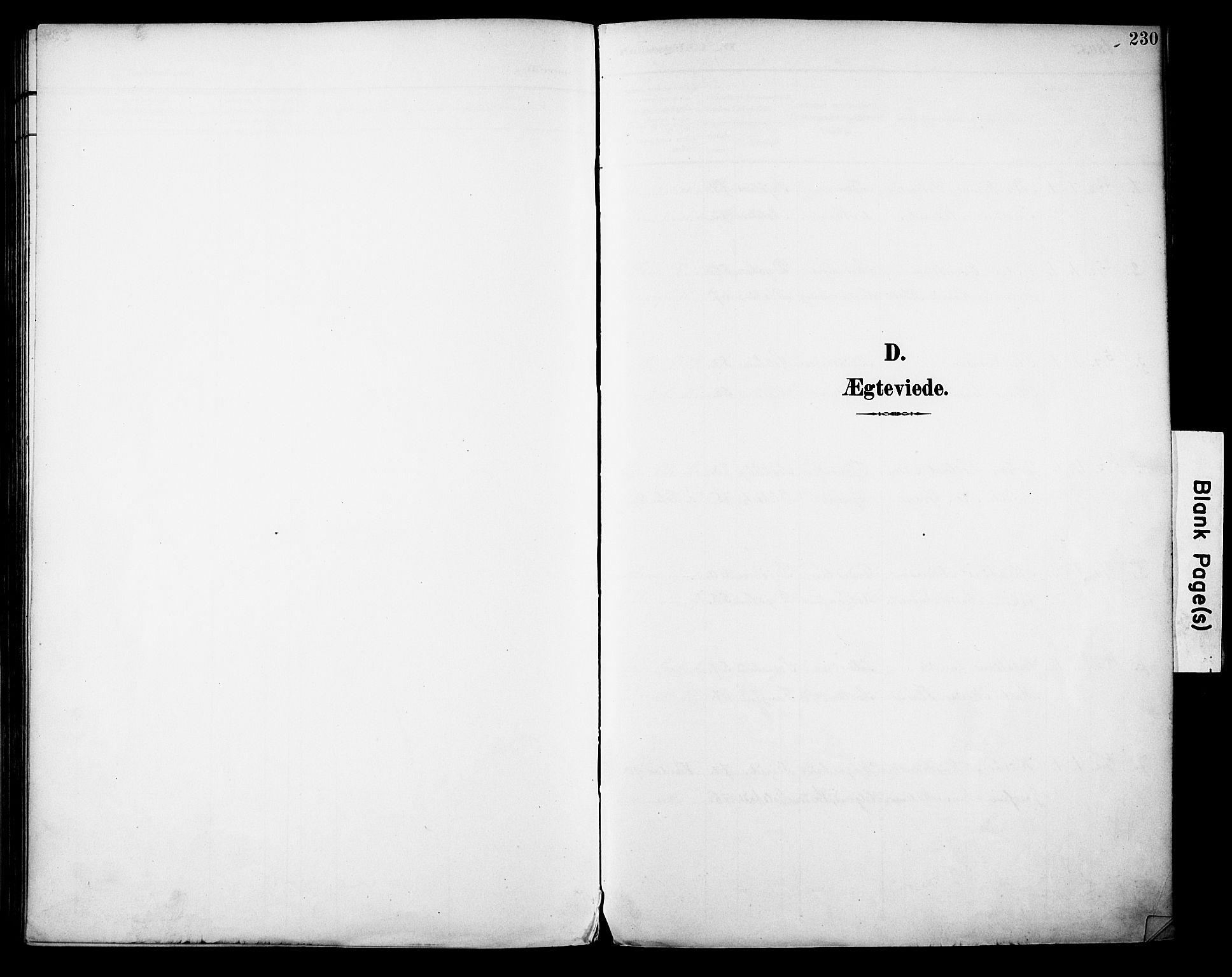 SAH, Vestre Toten prestekontor, H/Ha/Haa/L0013: Parish register (official) no. 13, 1895-1911, p. 230