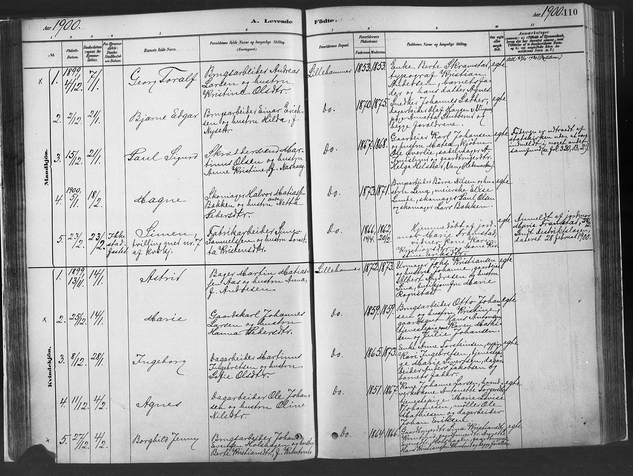 SAH, Fåberg prestekontor, H/Ha/Haa/L0010: Parish register (official) no. 10, 1879-1900, p. 110