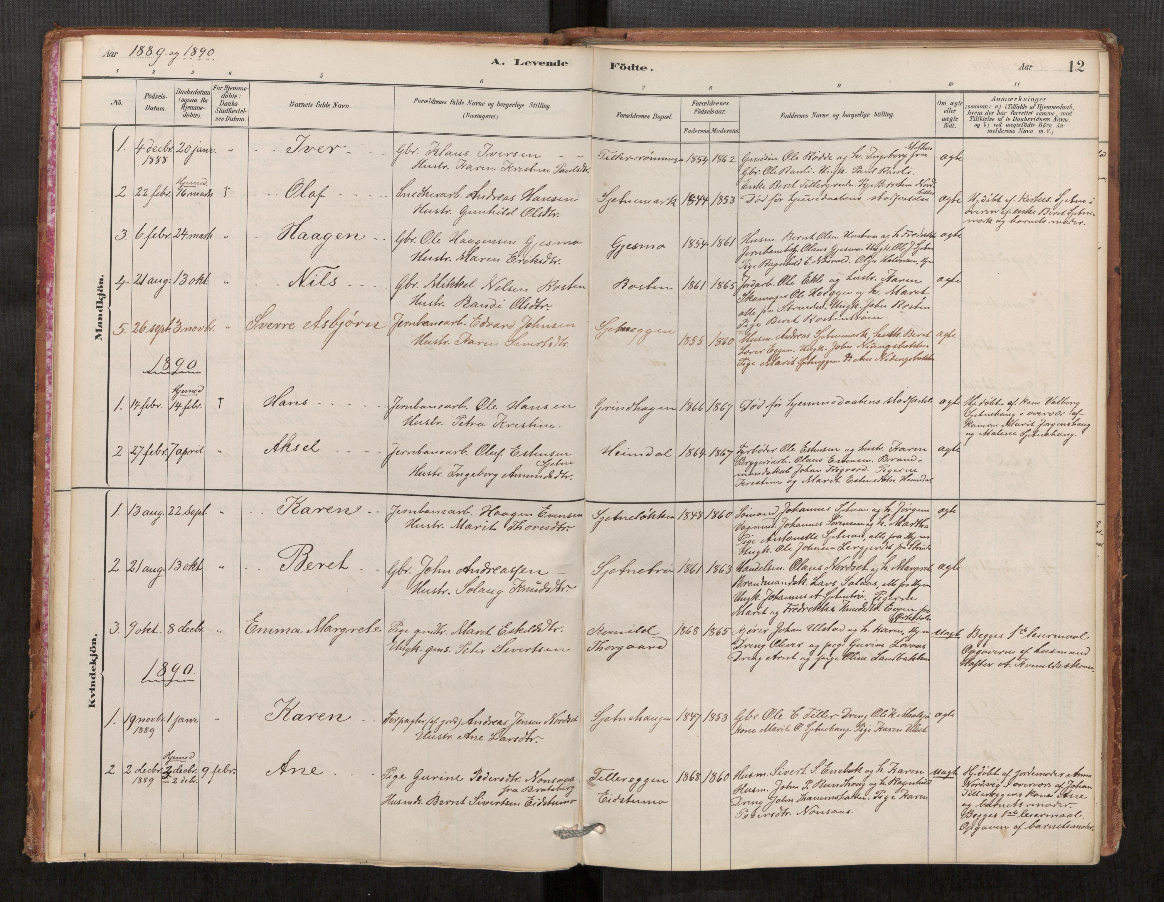 SAT, Klæbu sokneprestkontor, Parish register (official) no. 1, 1880-1900, p. 12