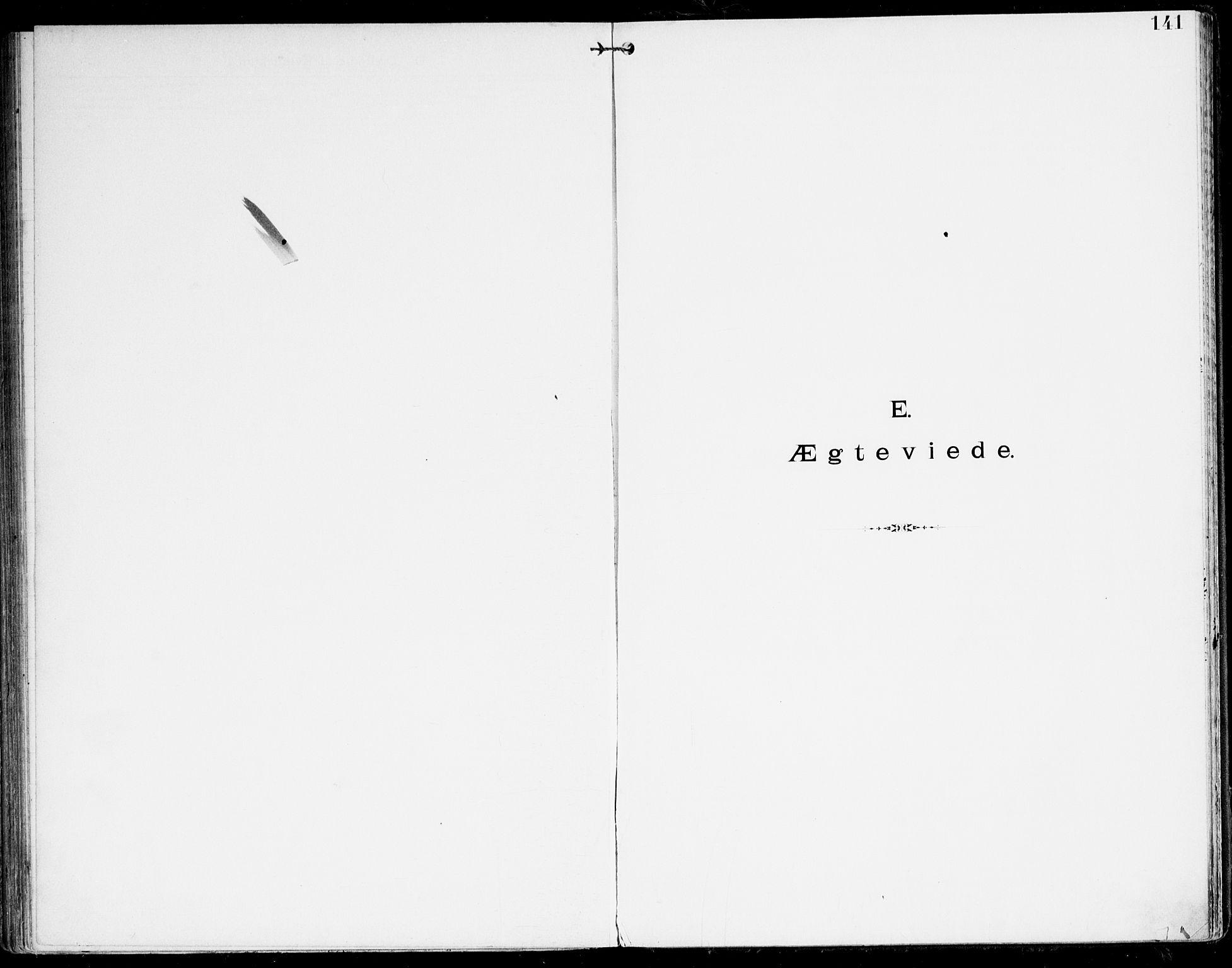 SAK, Den evangelisk-lutherske frikirke, Kristiansand, F/Fa/L0003: Dissenter register no. F 11, 1892-1925, p. 141