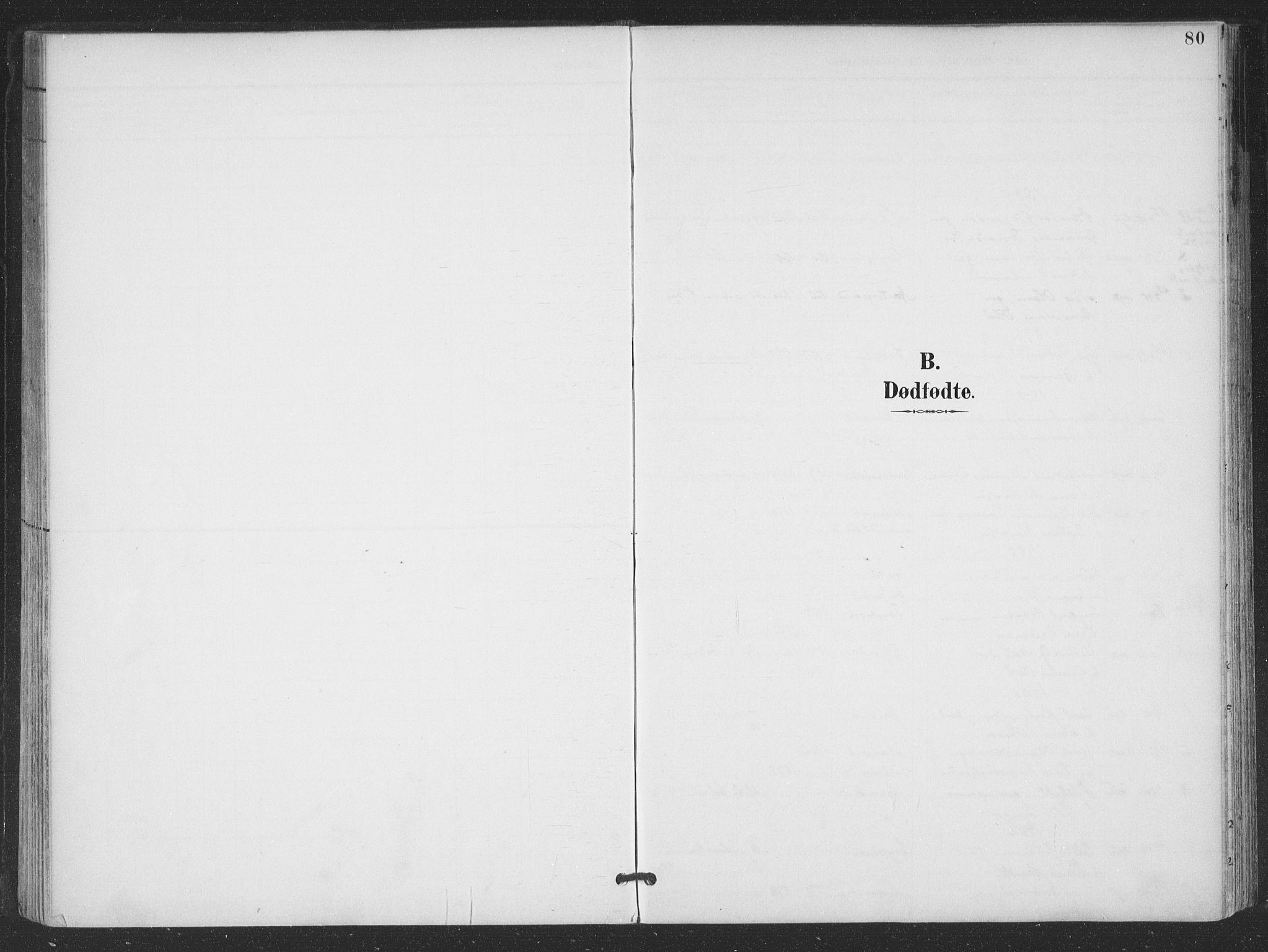 SAT, Ministerialprotokoller, klokkerbøker og fødselsregistre - Nordland, 866/L0939: Parish register (official) no. 866A02, 1894-1906, p. 80