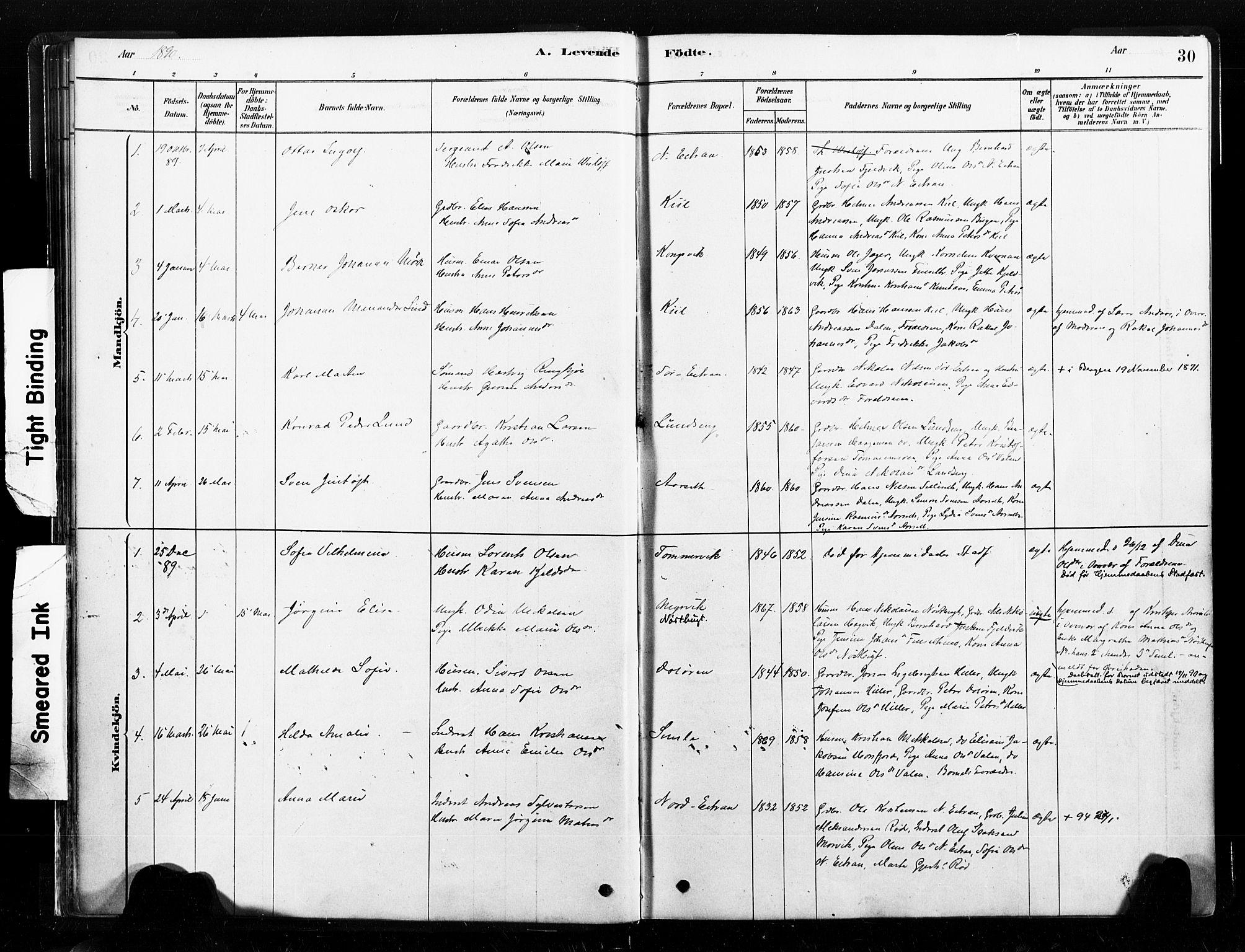 SAT, Ministerialprotokoller, klokkerbøker og fødselsregistre - Nord-Trøndelag, 789/L0705: Parish register (official) no. 789A01, 1878-1910, p. 30