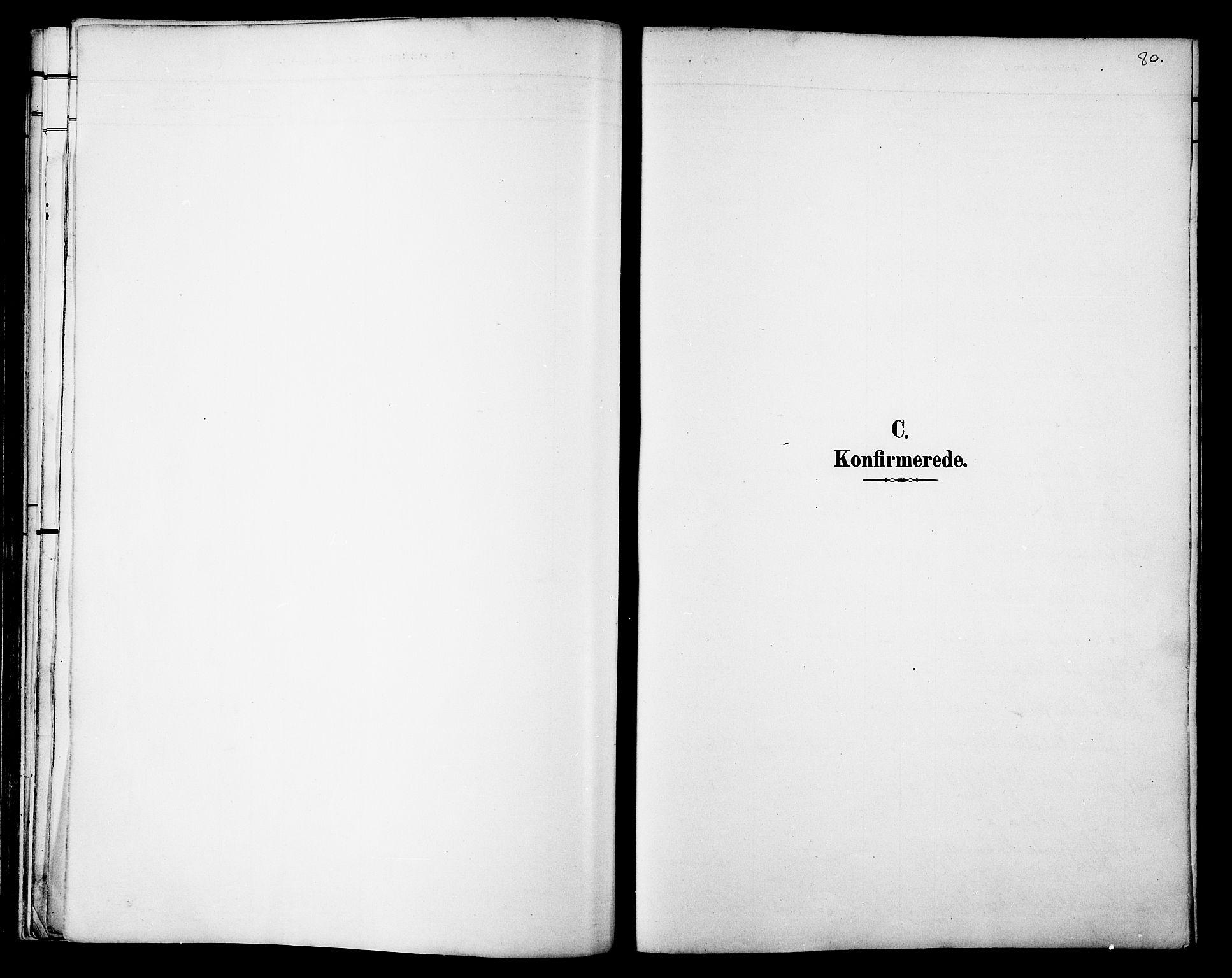 SAT, Ministerialprotokoller, klokkerbøker og fødselsregistre - Nord-Trøndelag, 733/L0327: Parish register (copy) no. 733C02, 1888-1918, p. 80