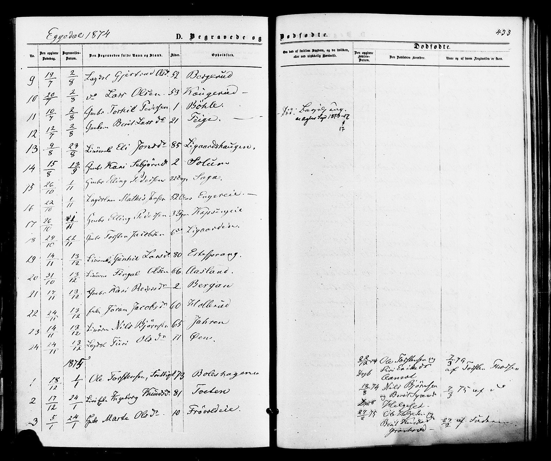 SAKO, Sigdal kirkebøker, F/Fa/L0010: Parish register (official) no. I 10 /3, 1872-1878, p. 433